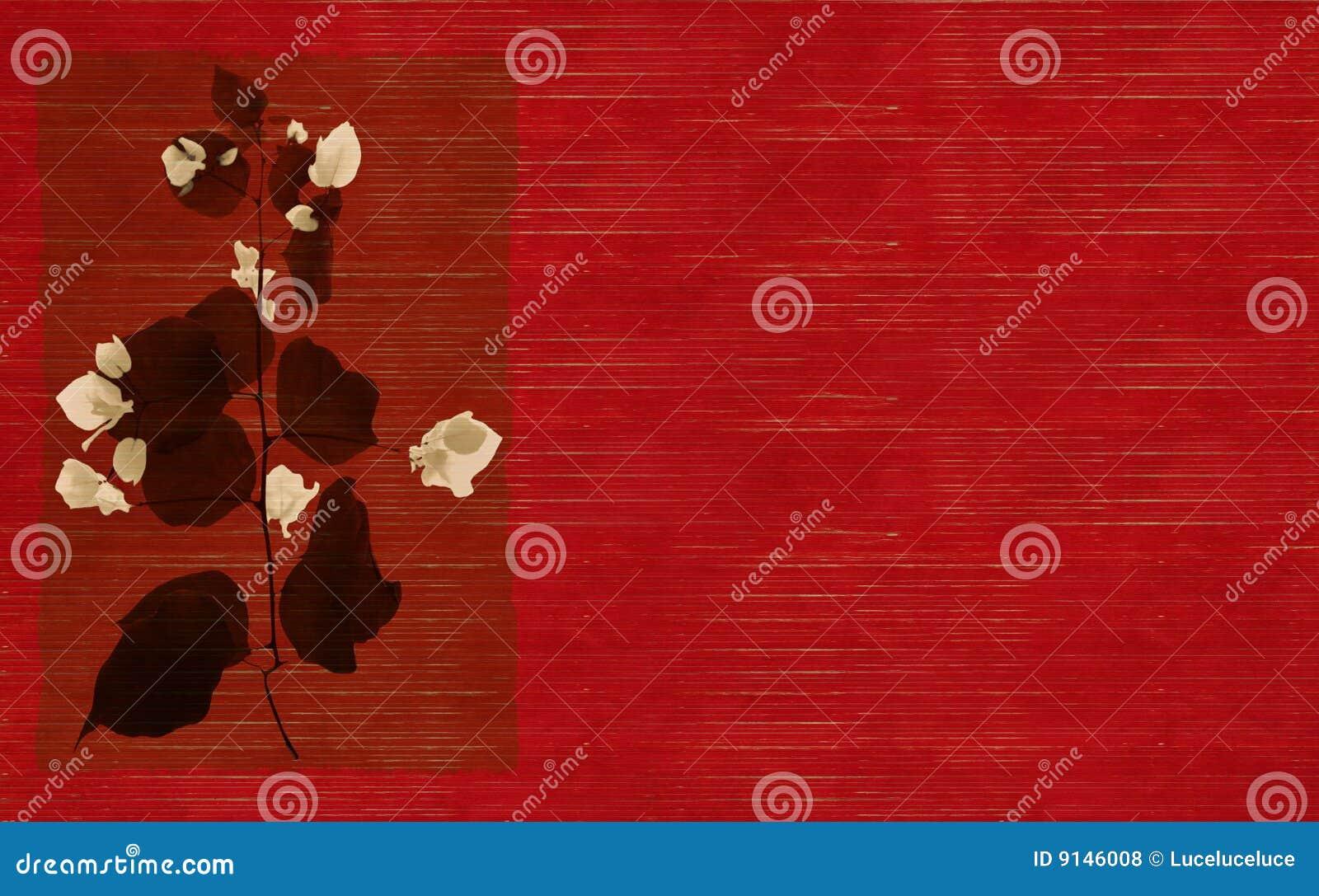 Röd white för svart blommatryck