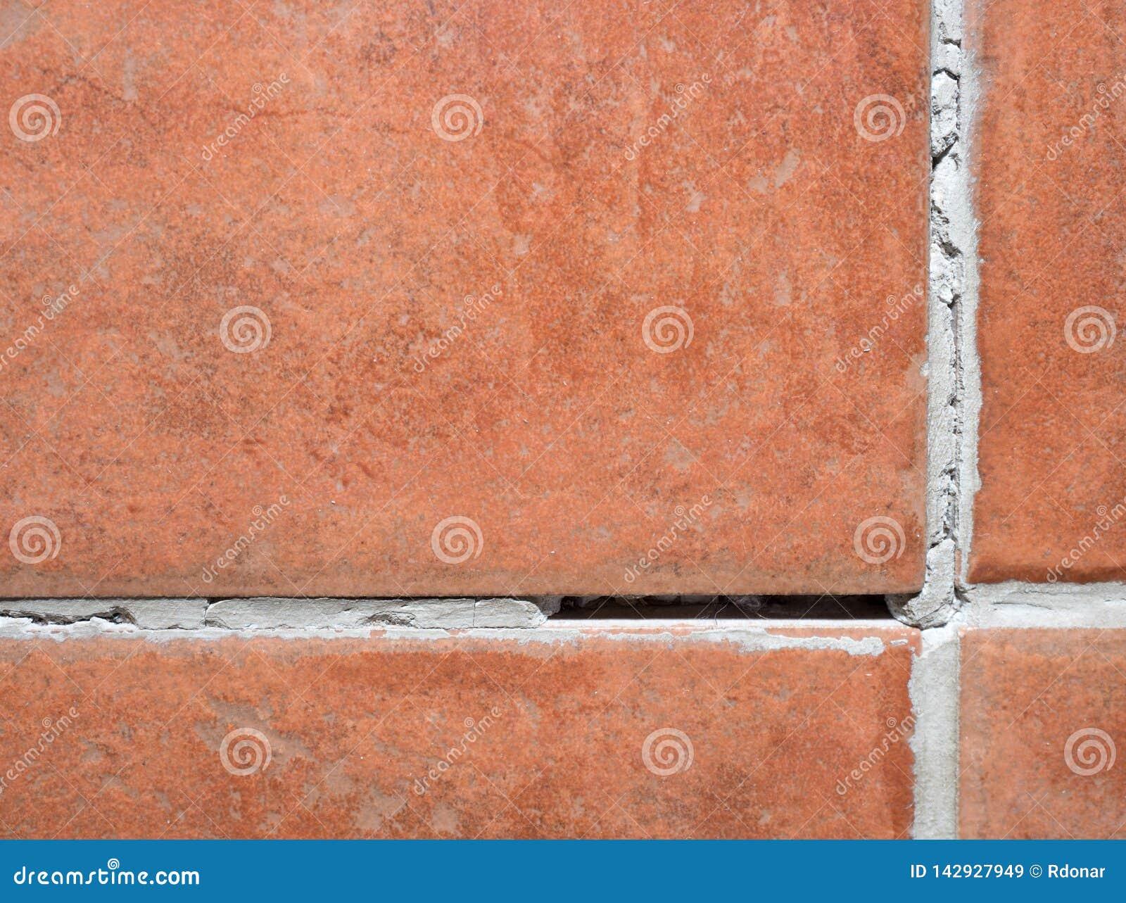 Röda bruna tegelplattor med grouts halt golv