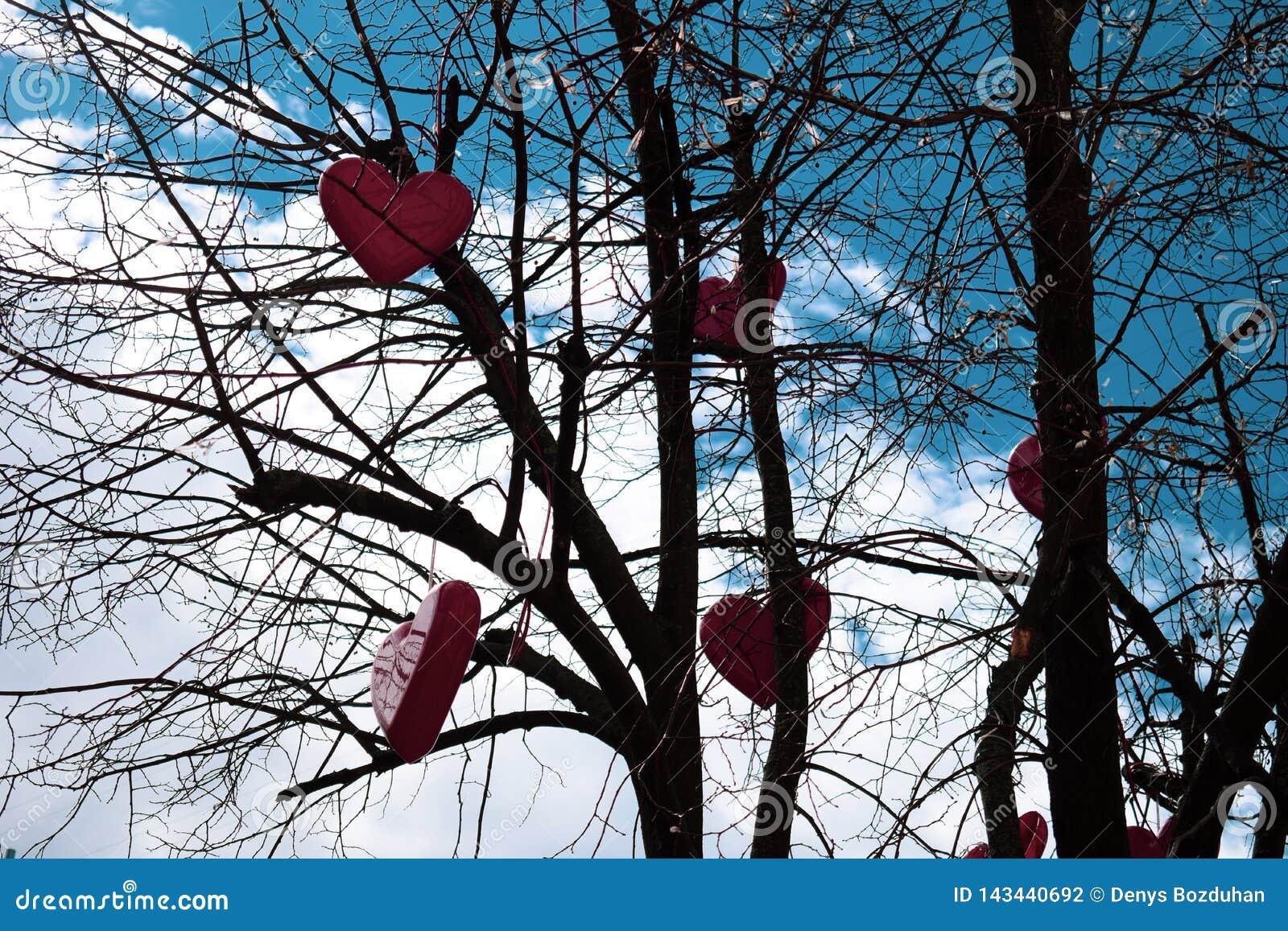 Röda hjärtor hänger på ett träd utan sidor mot himlen