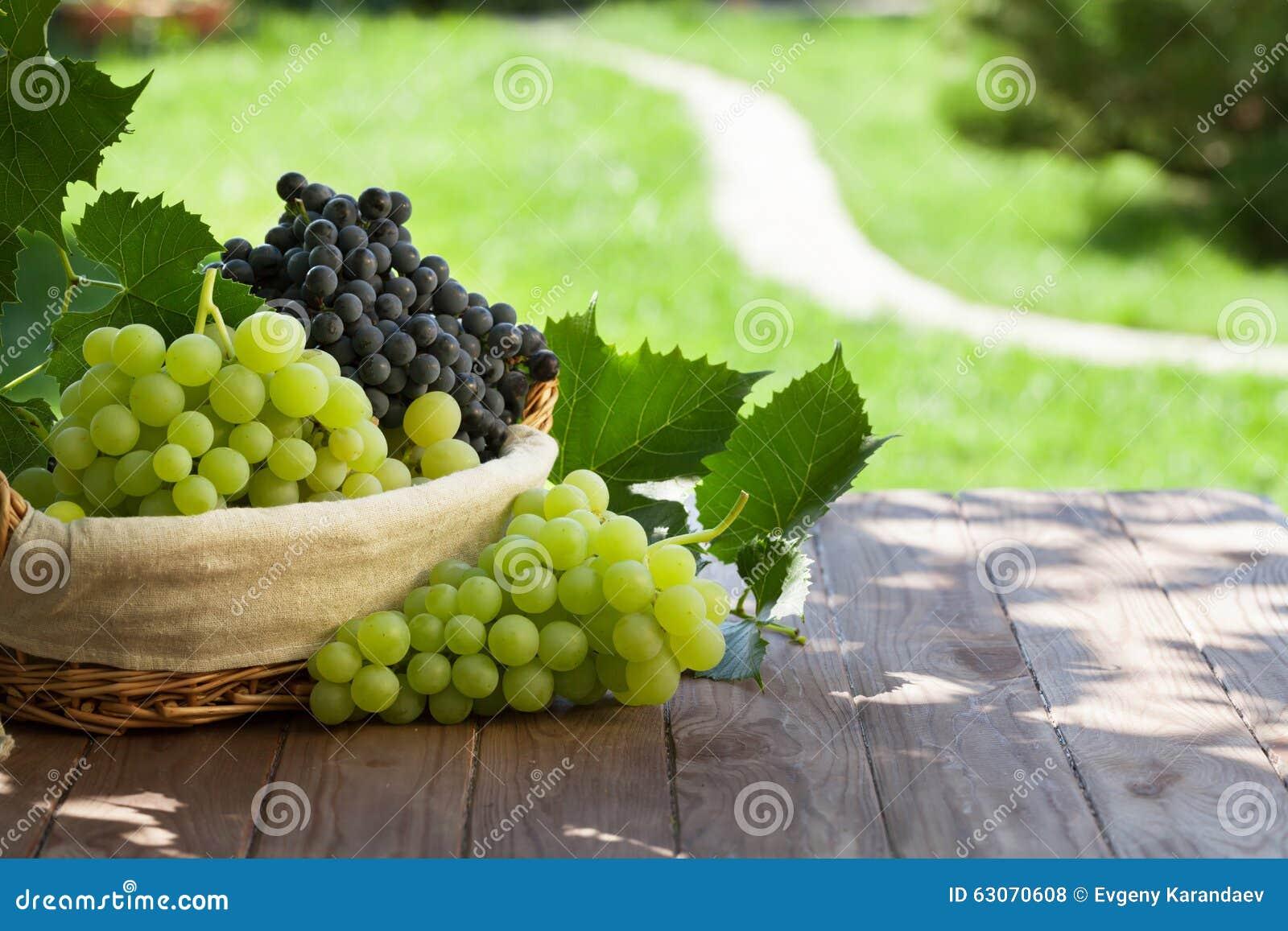 Röda och vita druvor i korg