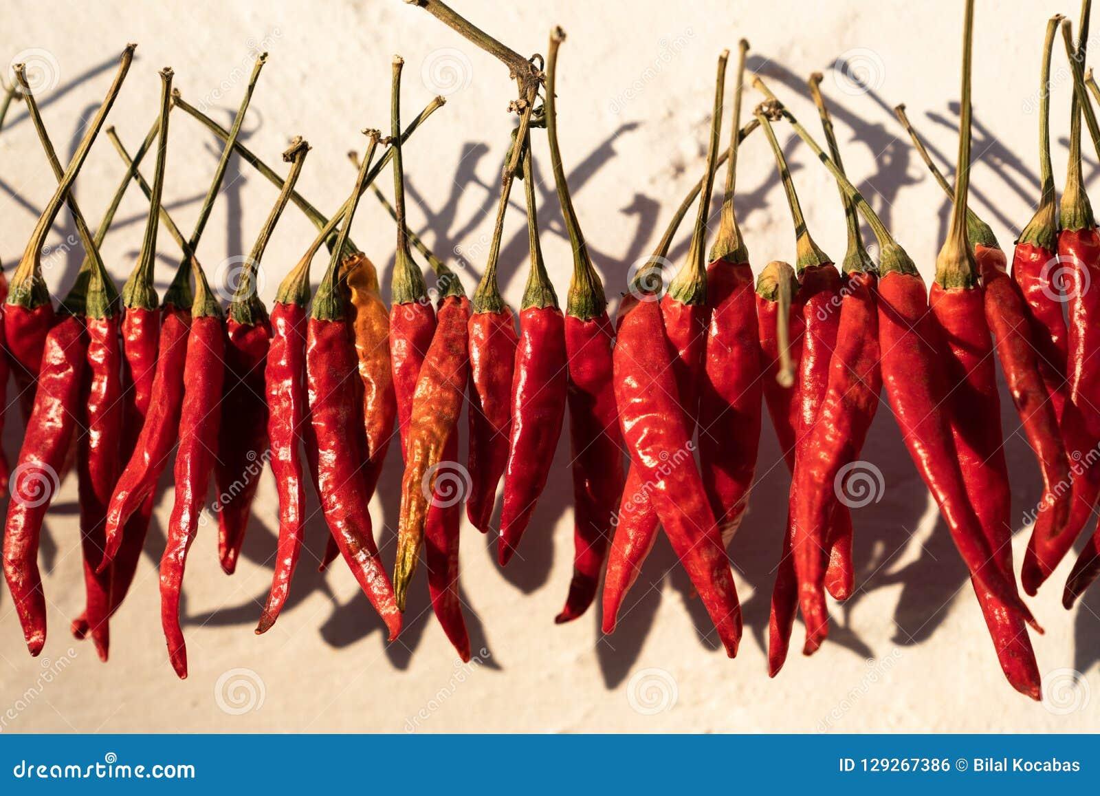 Röda peppar som hänger för att torka i solsken utanför ett hus