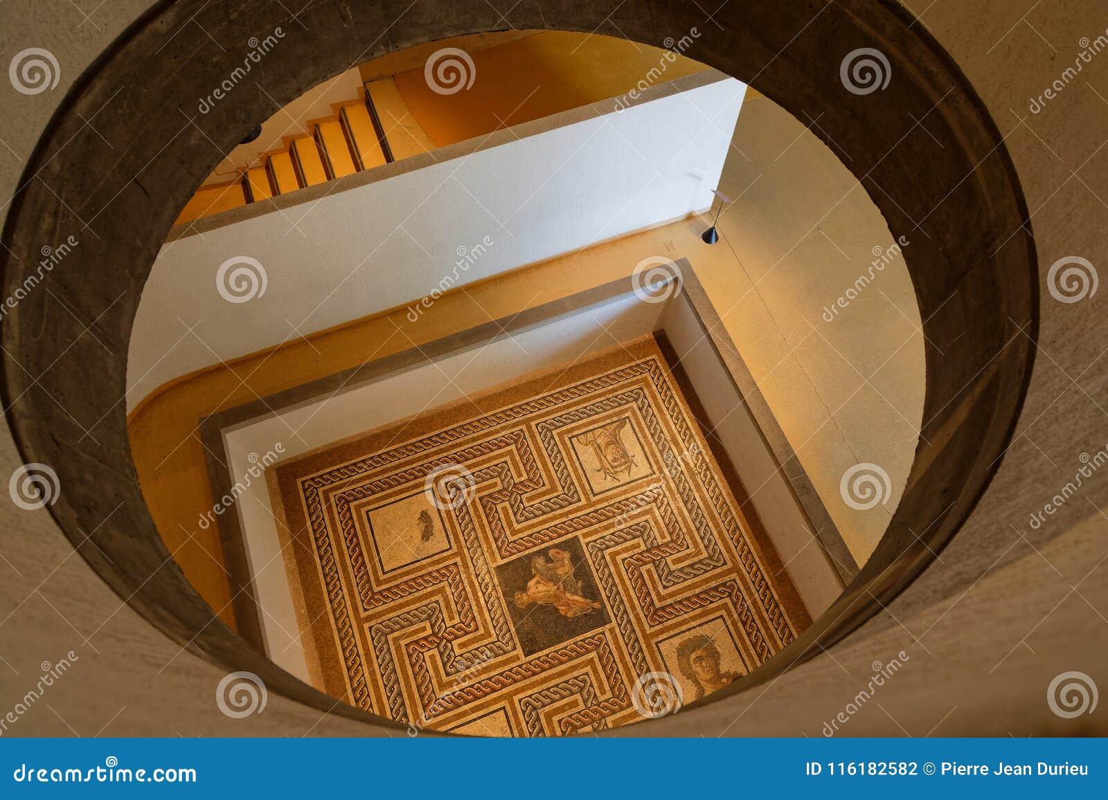 Römisches Mosaik gefunden in Lyon