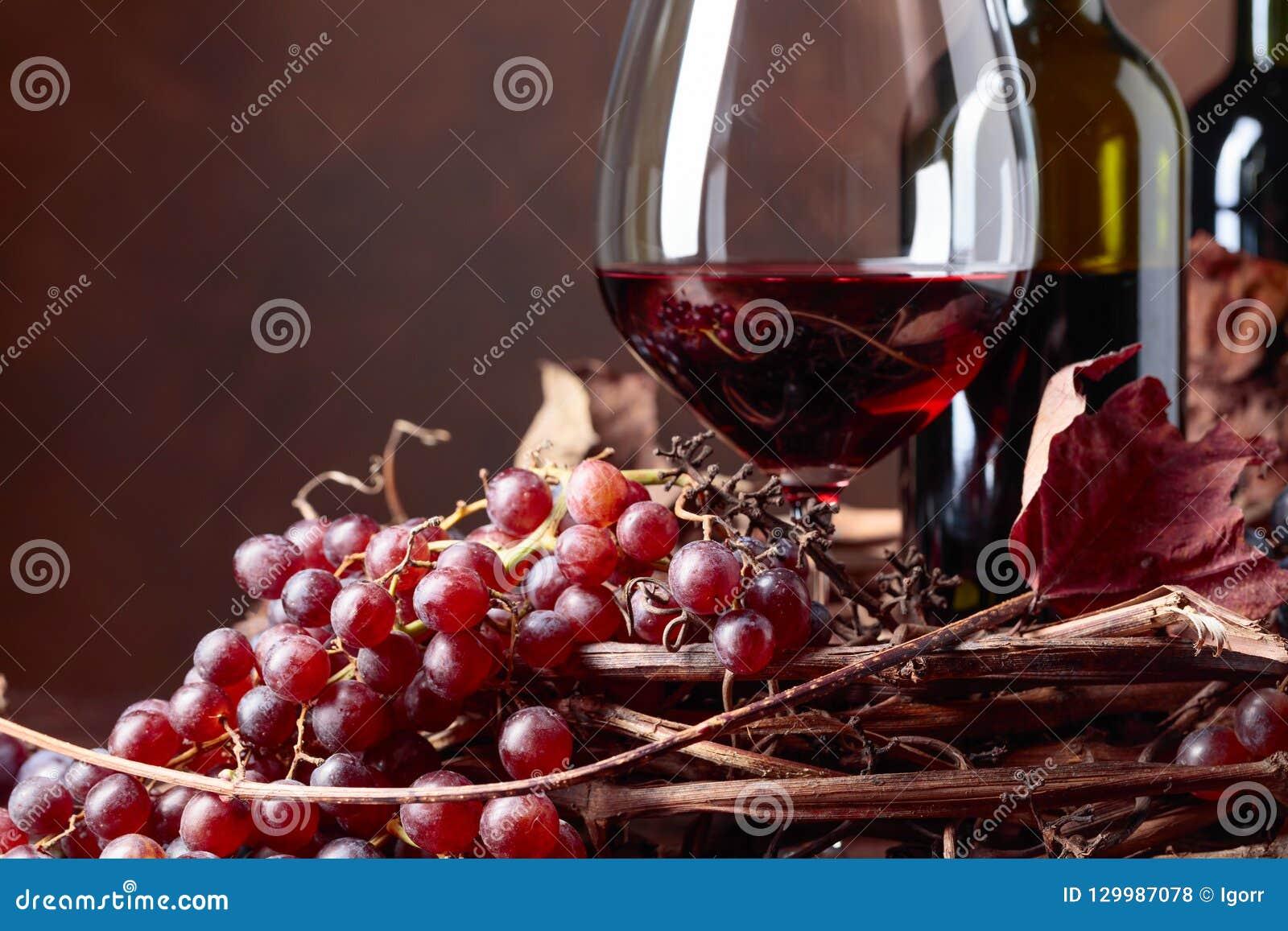 Rött vin och nya druvor med torkat upp vinrankasidor