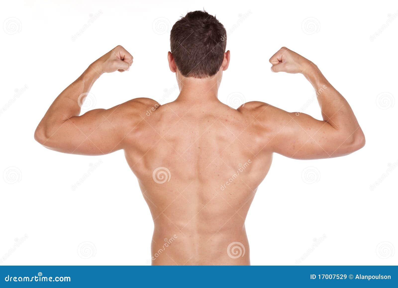 Rückenmuskel stockbild. Bild von lebensstil, biceps, stattlich ...