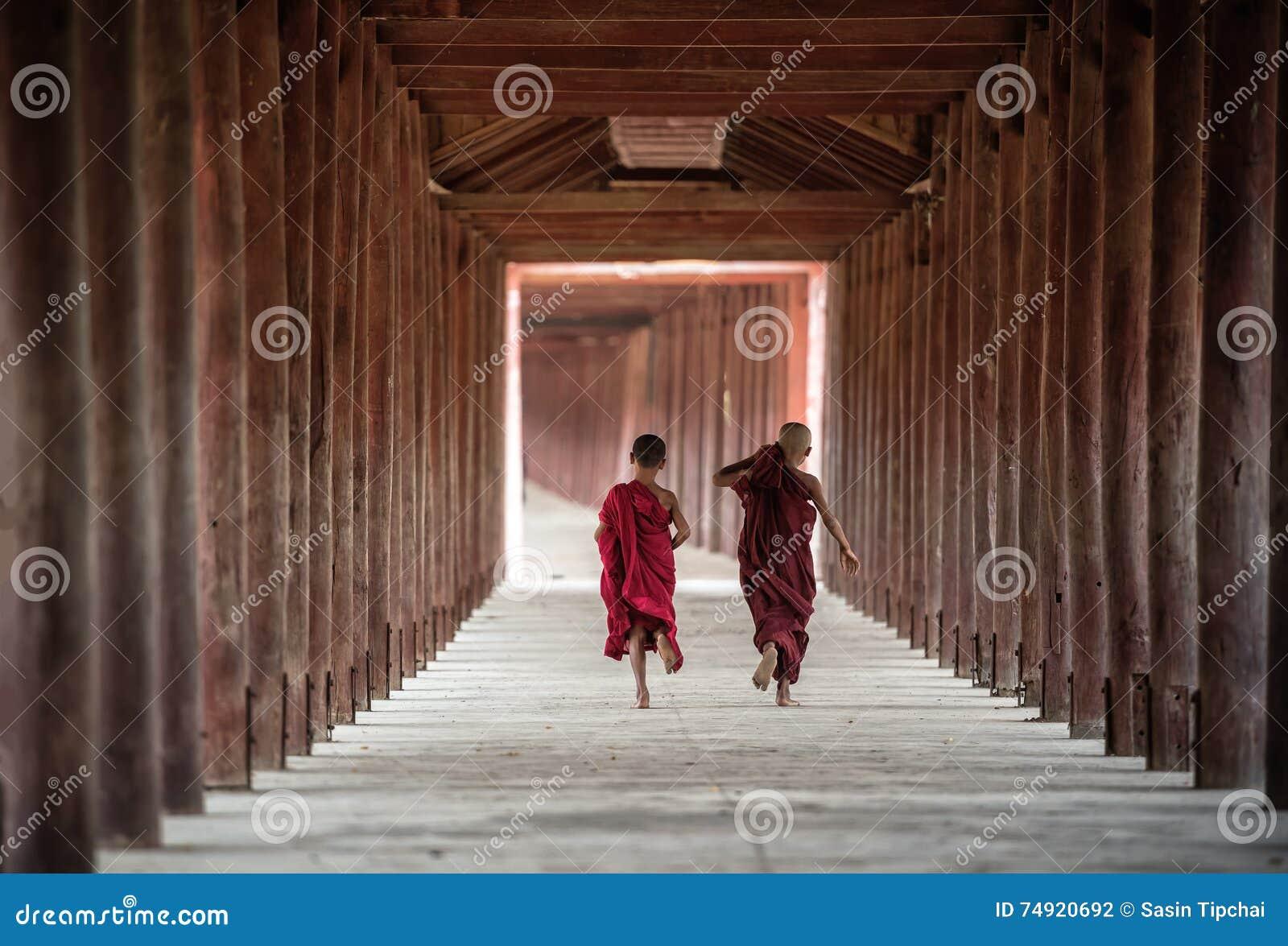 Rückseite des buddhistischen Anfängers gehen in Tempel