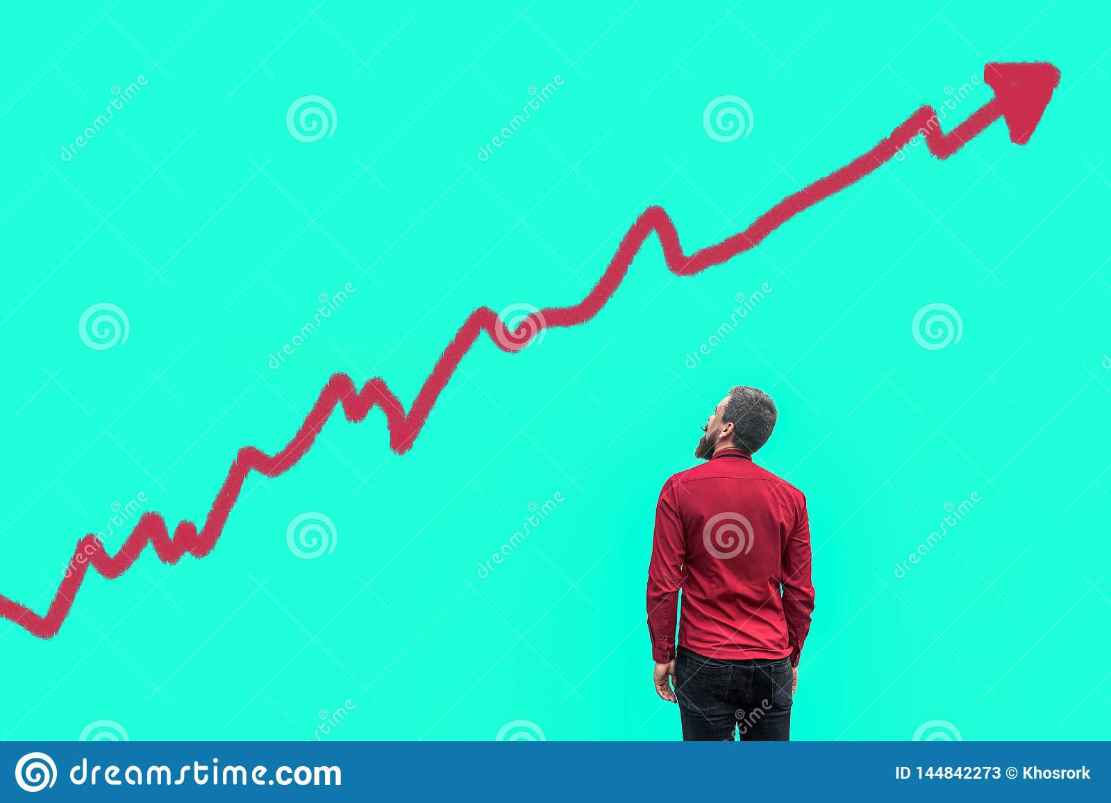R?ckseite des jungen b?rtigen h?bschen Gesch?ftsmannes in der roten Hemdstellung und des Betrachtens des wachsenden Diagrammdiagr