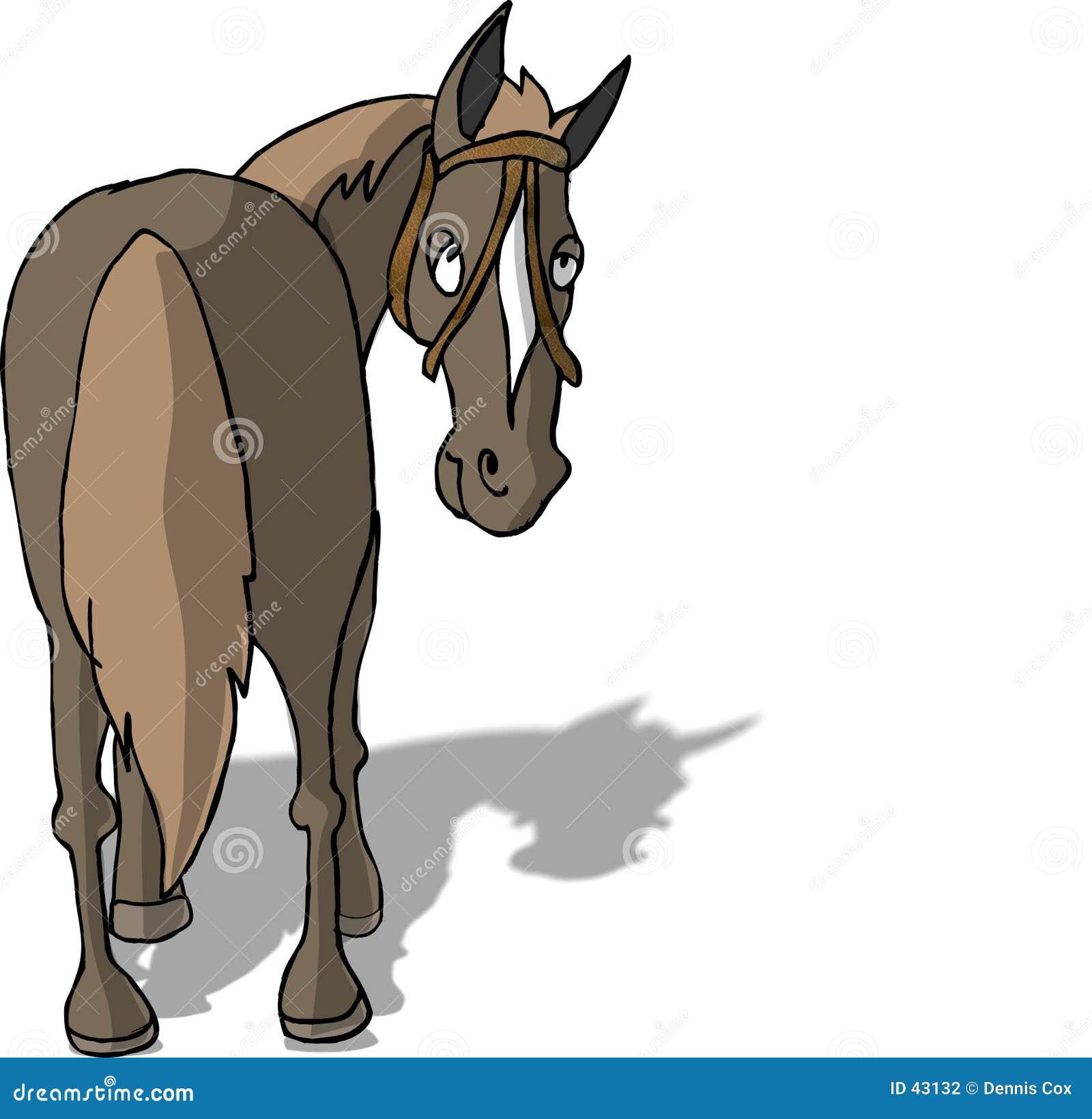Download Rückseite des Pferds stock abbildung. Illustration von blick - 43132