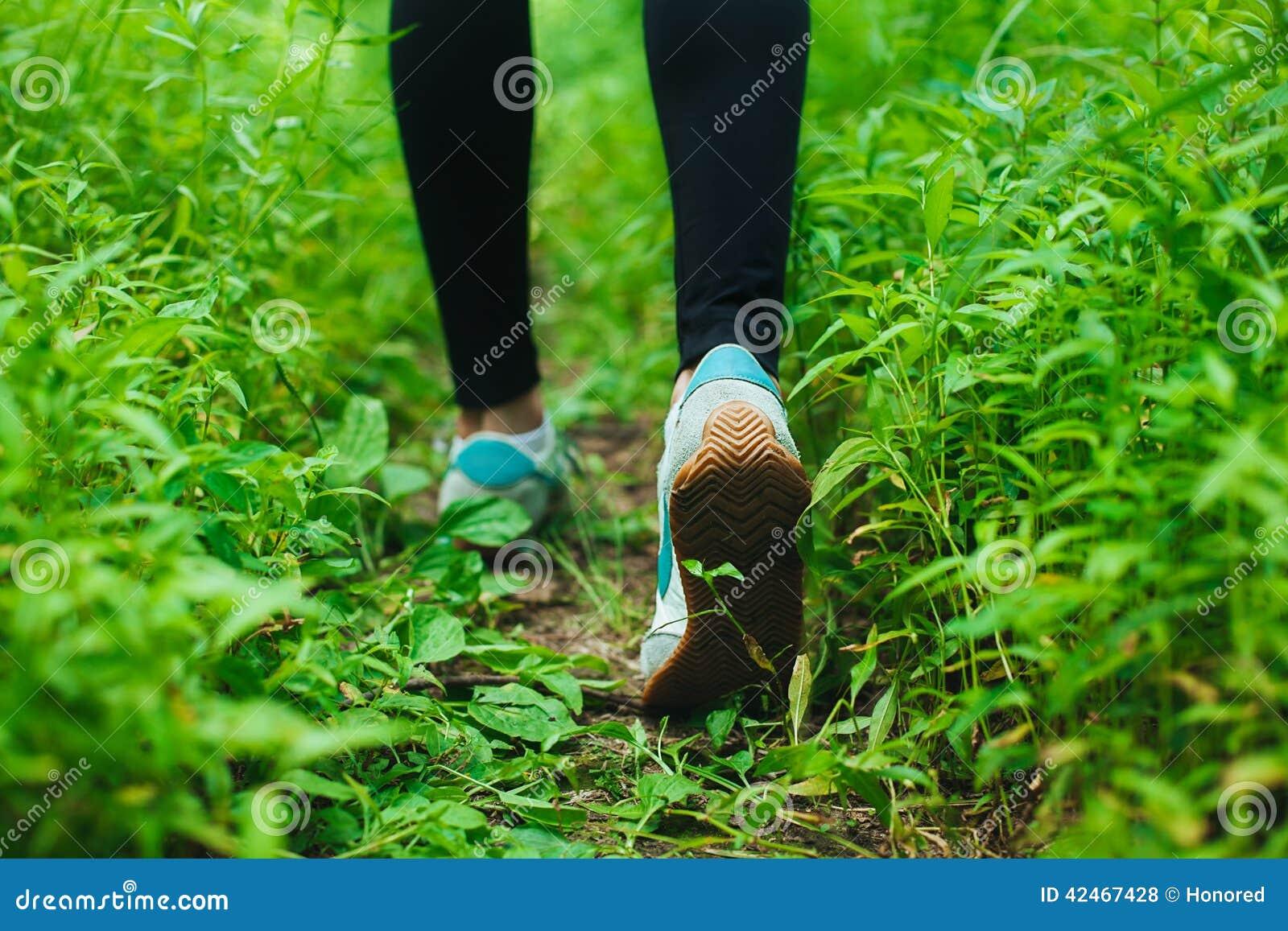 Rütteln im Wald