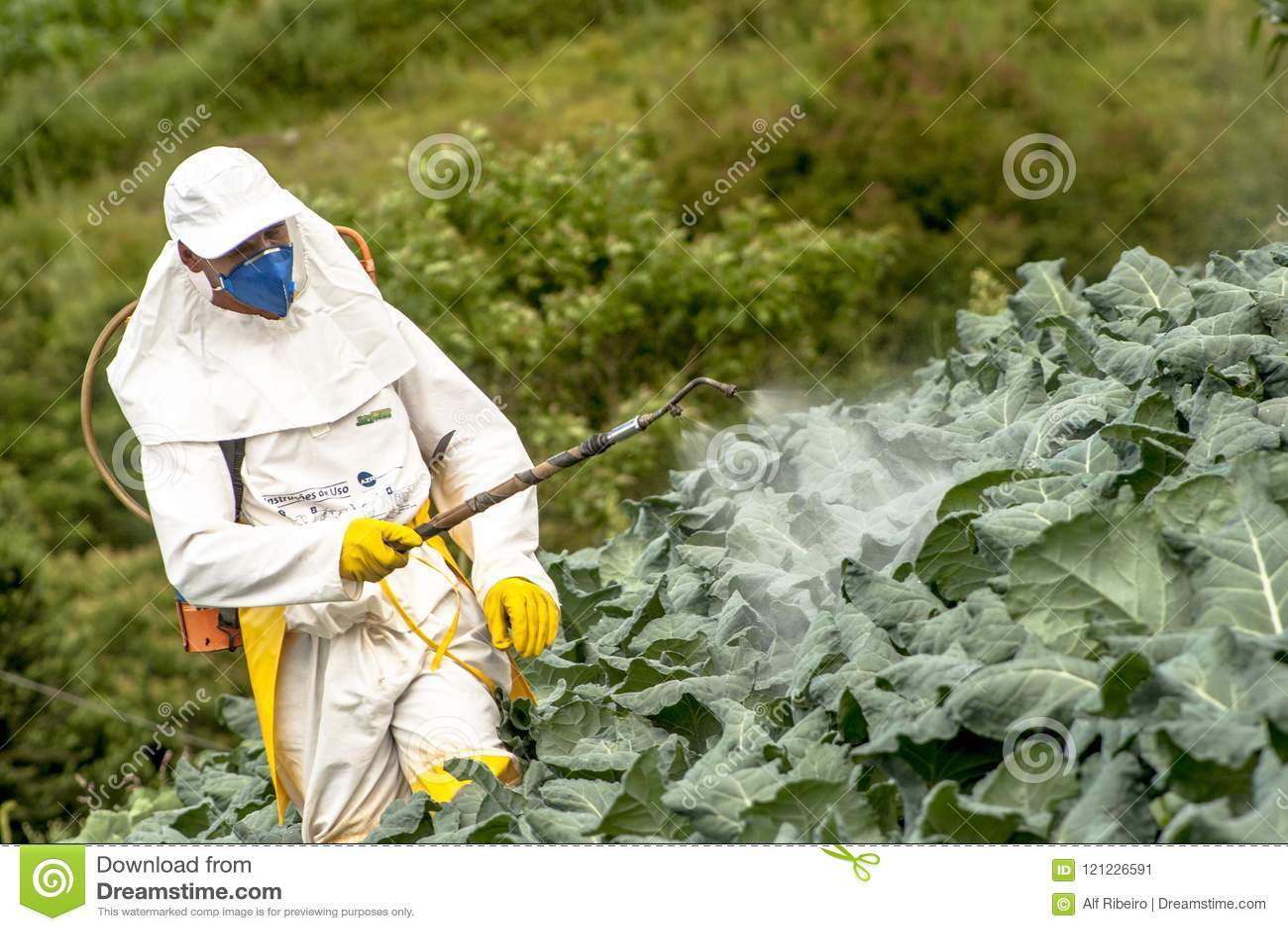 Ręczna pestycyd natryskownica w sałacie
