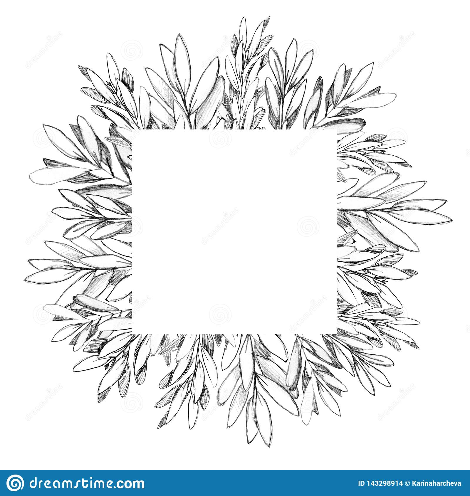 Ręka rysująca gałązki oliwnej rama z przestrzenią dla teksta