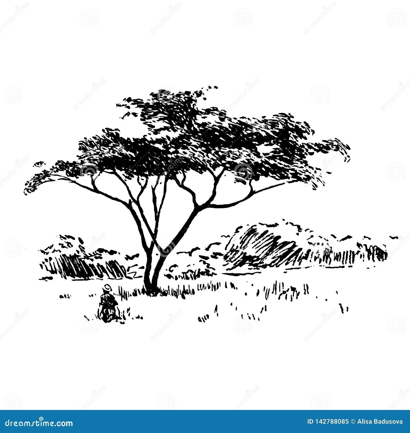 Ręka rysujący Afrykański safari natury krajobrazu czerń na białym tle