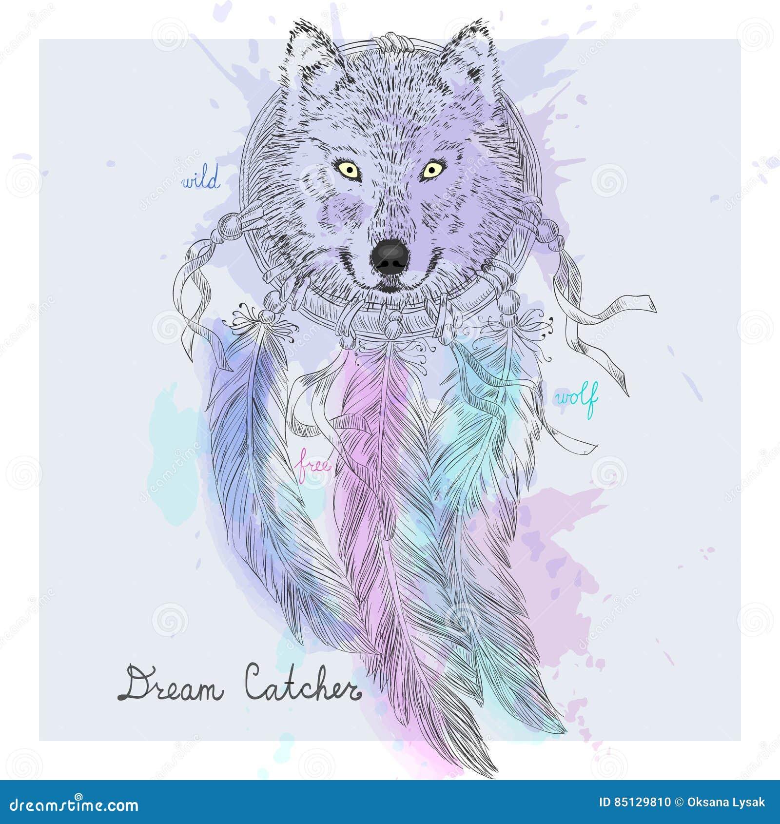 Ręka Rysujący Indiański Dekoracyjny Wymarzony łapacza Wilk