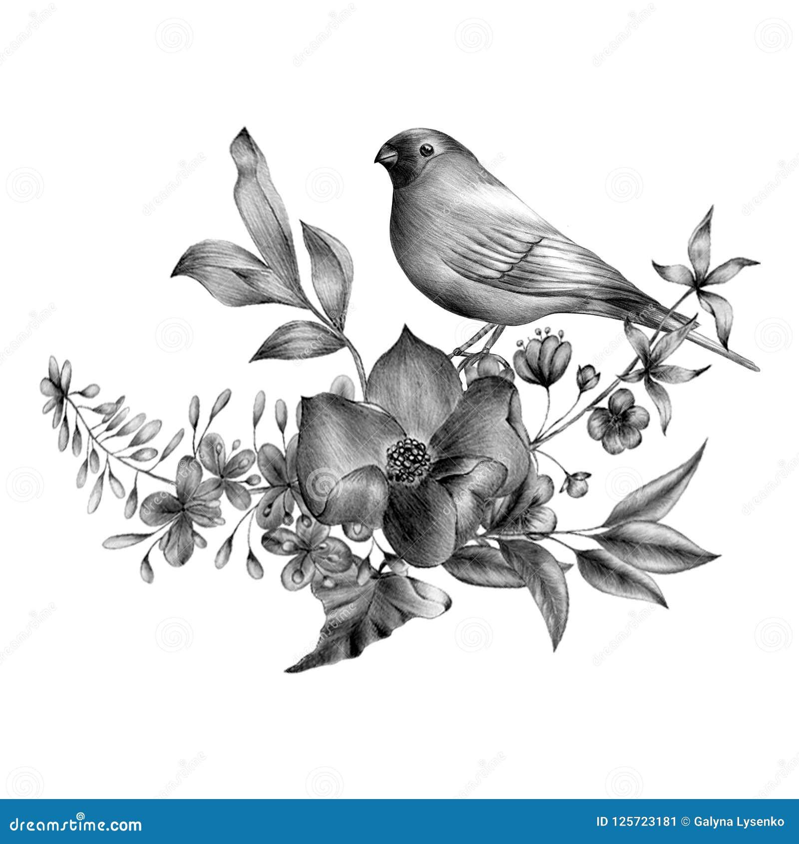 Ręka rysujący monochromatyczny skład roczników ptaki i kwiaty Wiosna ptaki siedzi na okwitnięcie gałąź liniowy