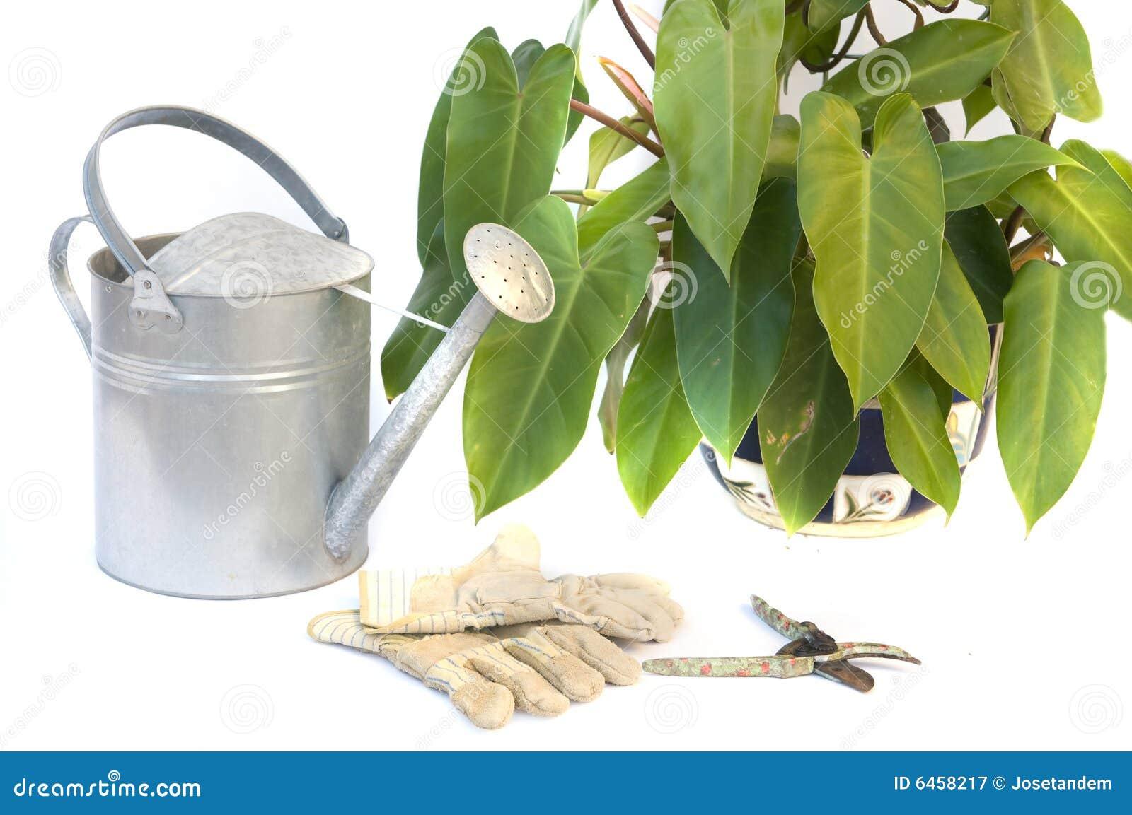 Rękawiczki ogrodowe odizolować strzyżenia przycinający białych