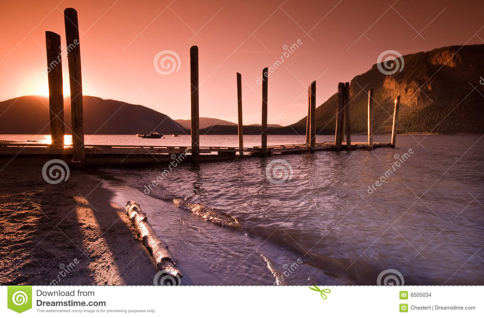 Ręki jeziornego łososia shuswap