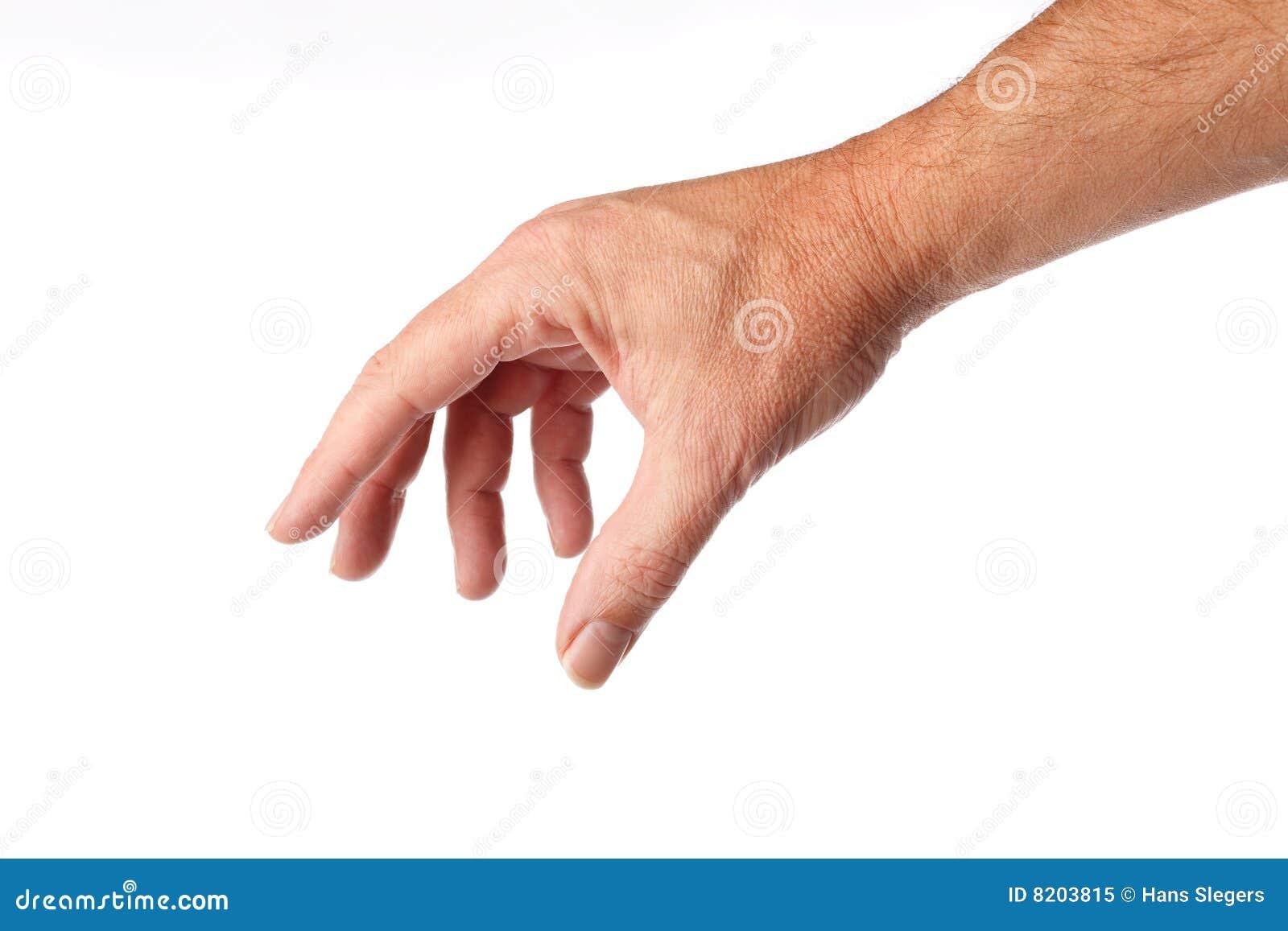 Ręki samiec