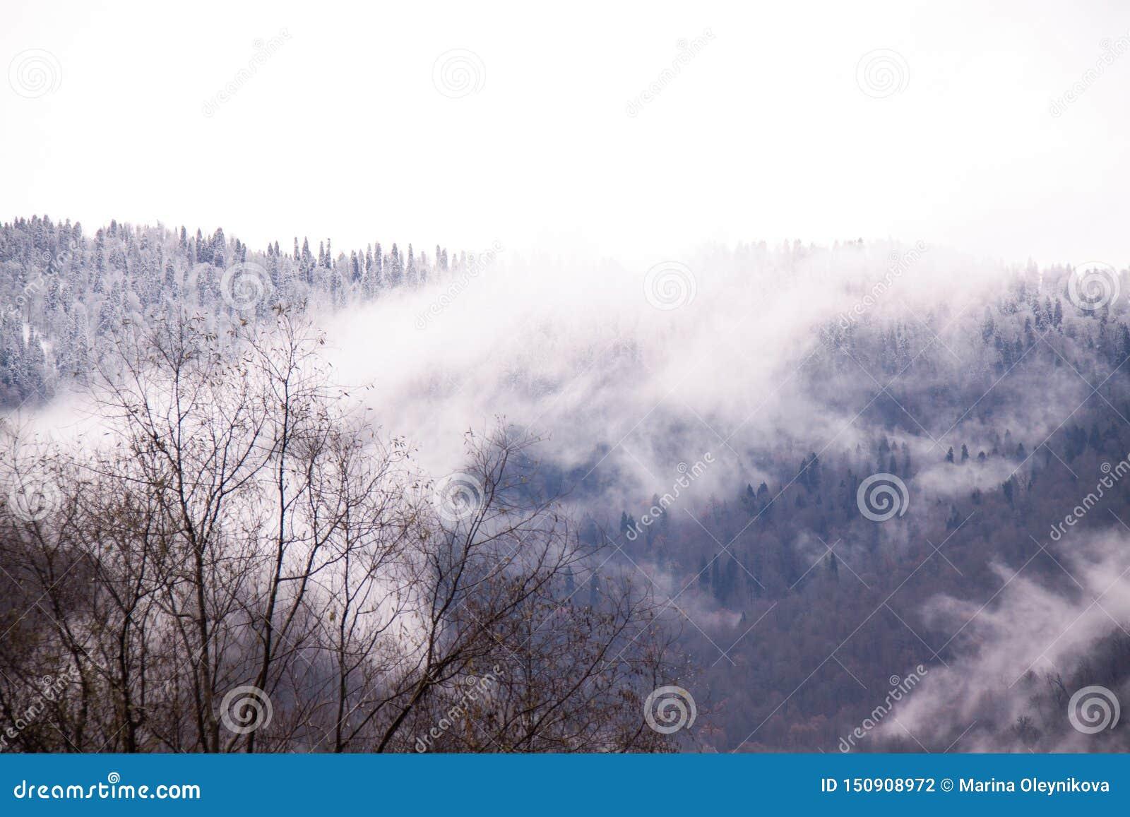 R Βουνά του Sochi Adler στην ομίχλη