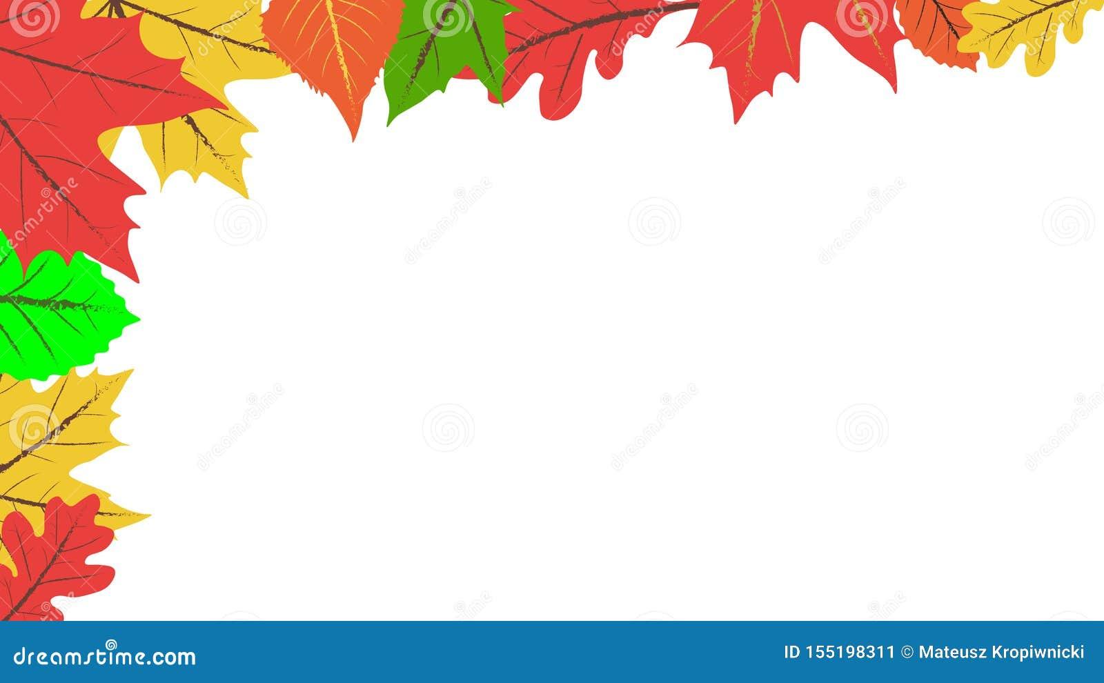 R 在白色背景的五颜六色的叶子