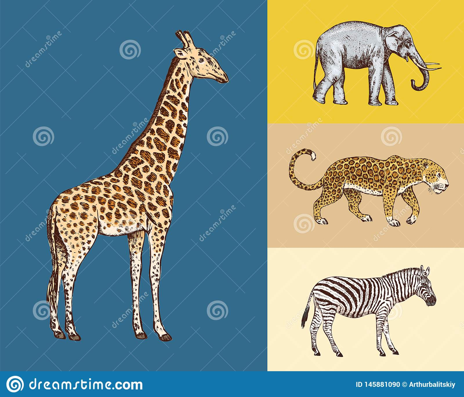 R 大象长颈鹿豹子野生斑马 被刻记的手拉的葡萄酒老单色徒步旅行队剪影