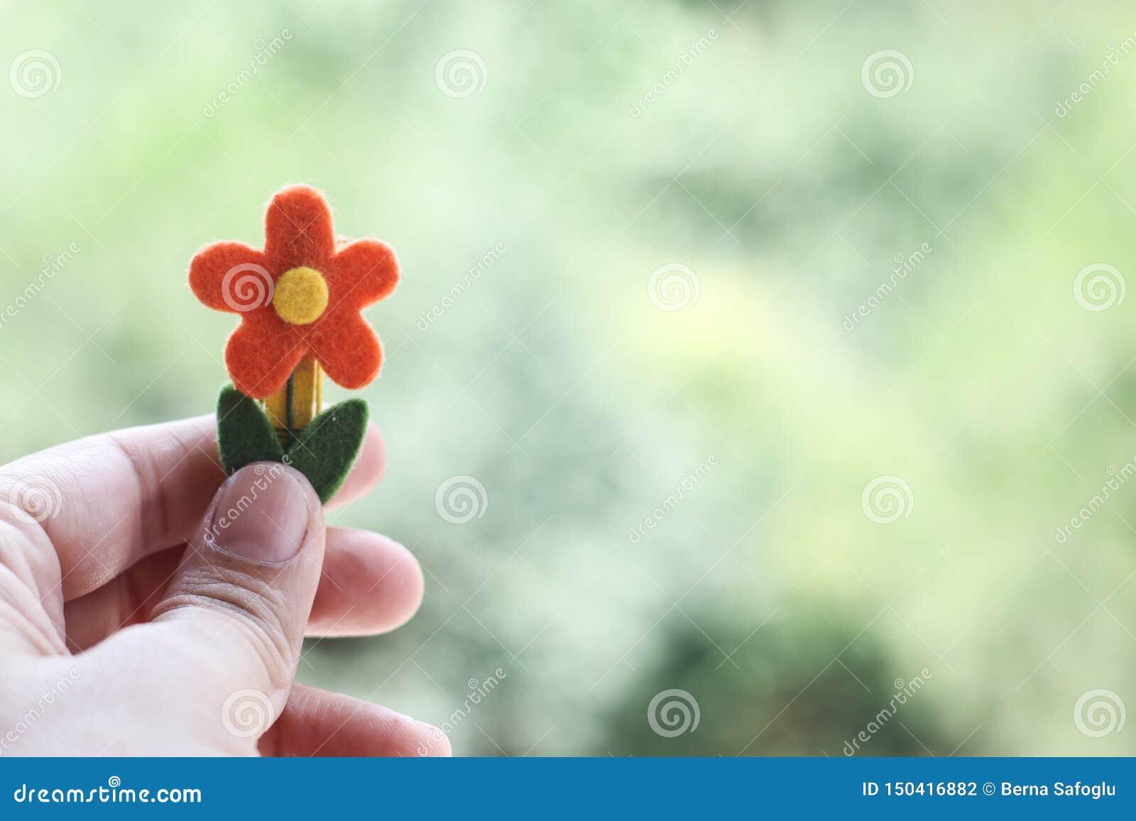 R?cka den h?llande blomman