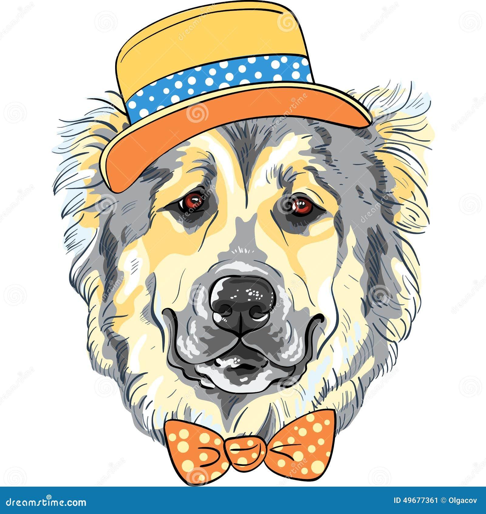 Raça caucasiano de Dog do pastor do cão do vetor no chapéu e no laço