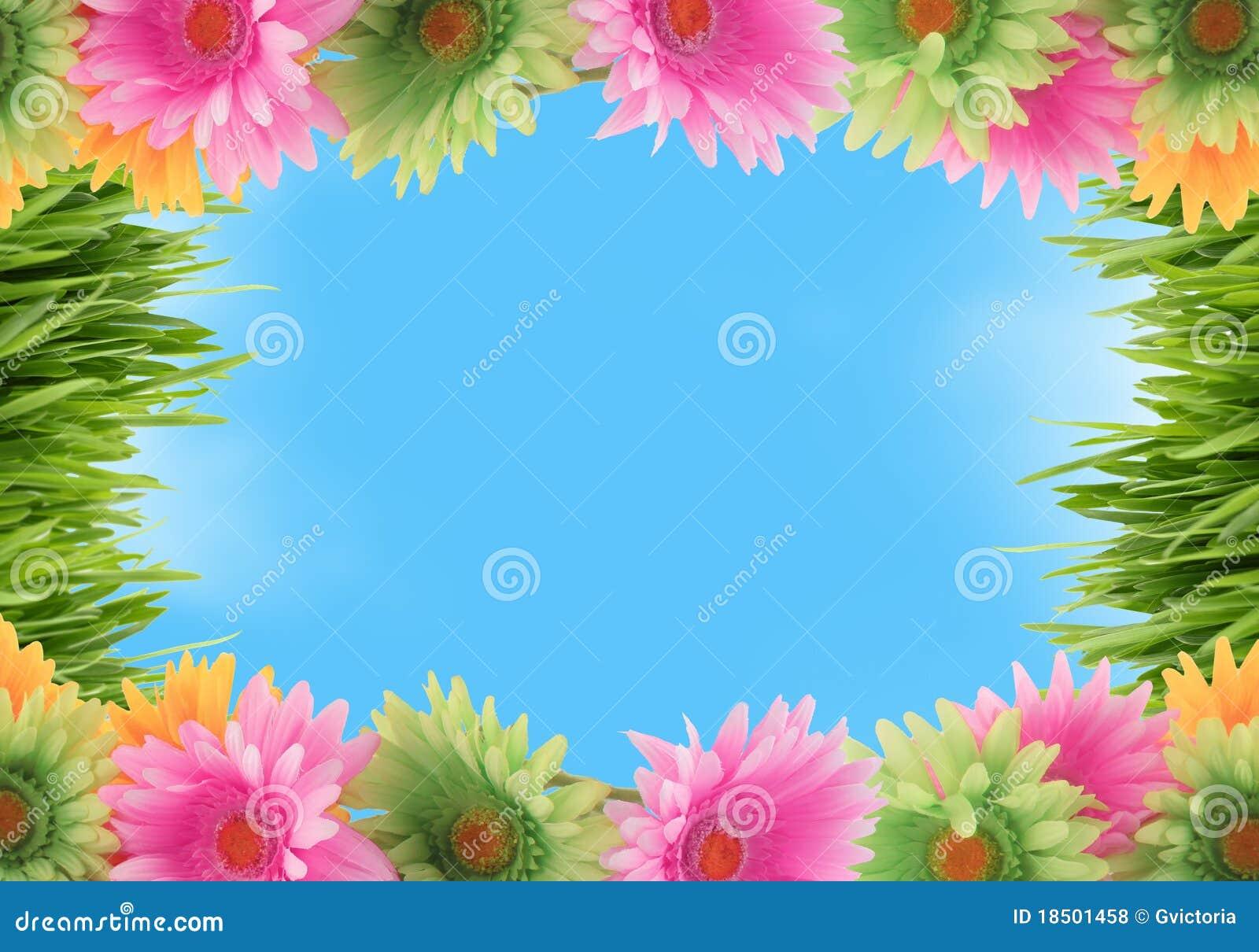 Rabatowa kolorowa kwiecista wiosna