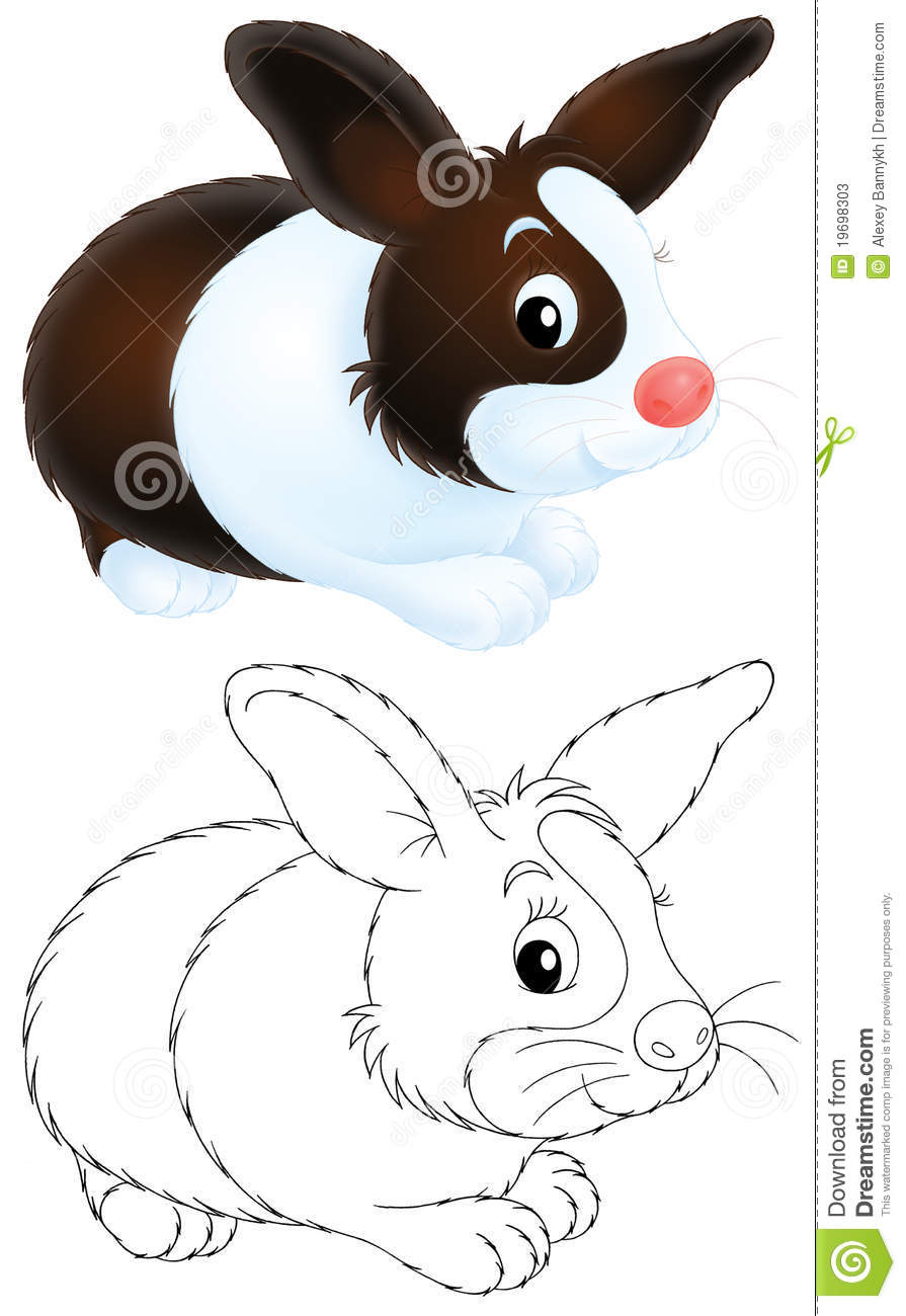 Go Back  gt  Images For  gt  Hare Clipart Black And WhiteYoung Peppy Hare