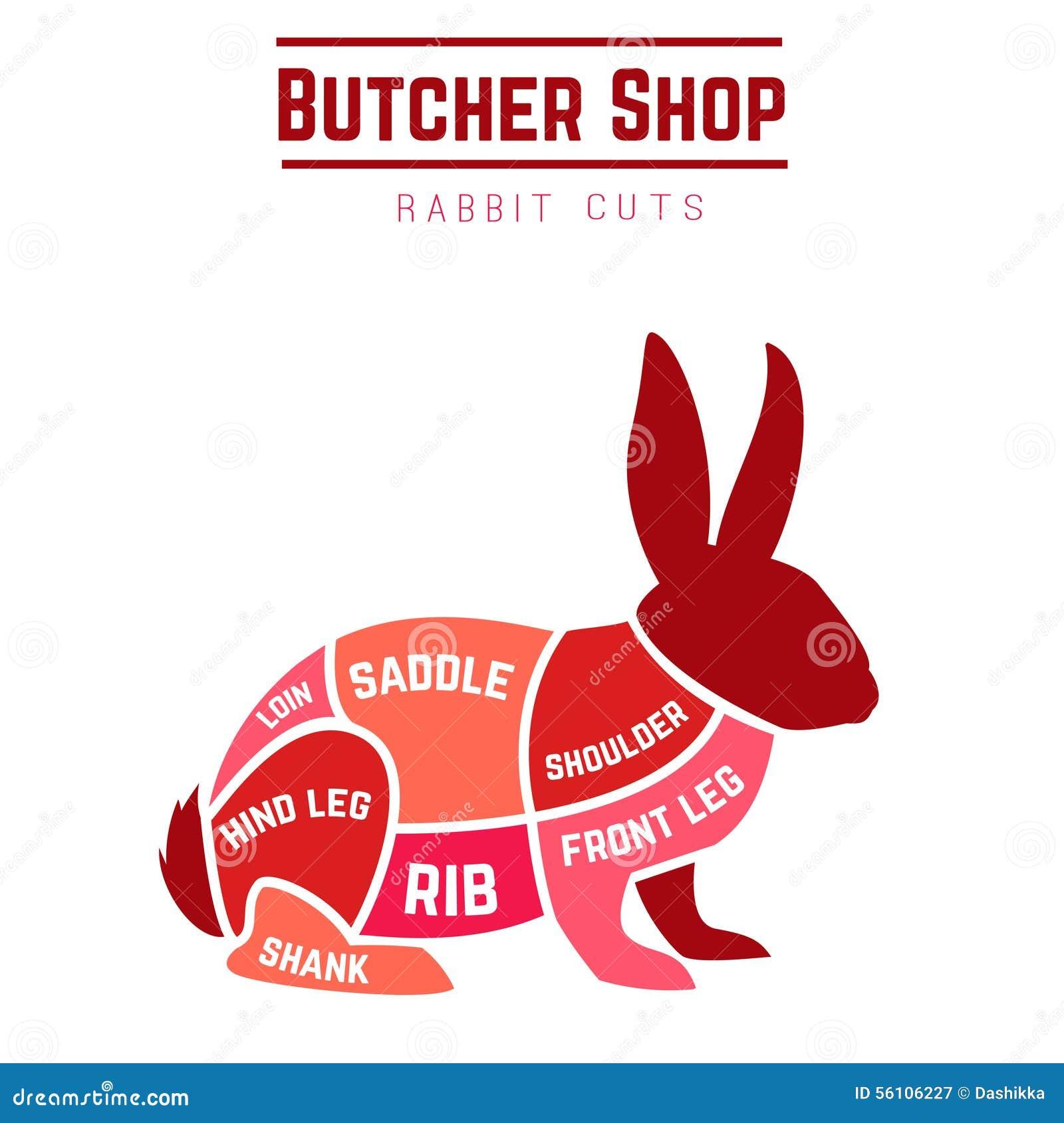 rabbit cuts diagram butcher shop vector illustration 56106227 diagram of moose cuts best wiring library