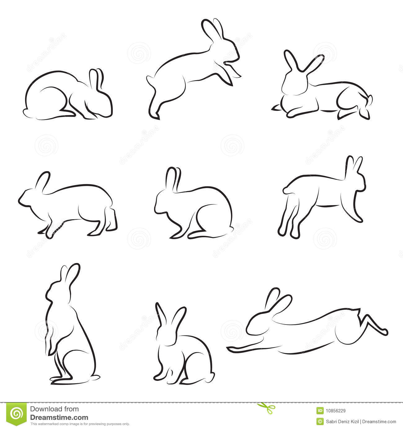 Rabbit Drawing Set Royalty Free Stock Images Image 10856229