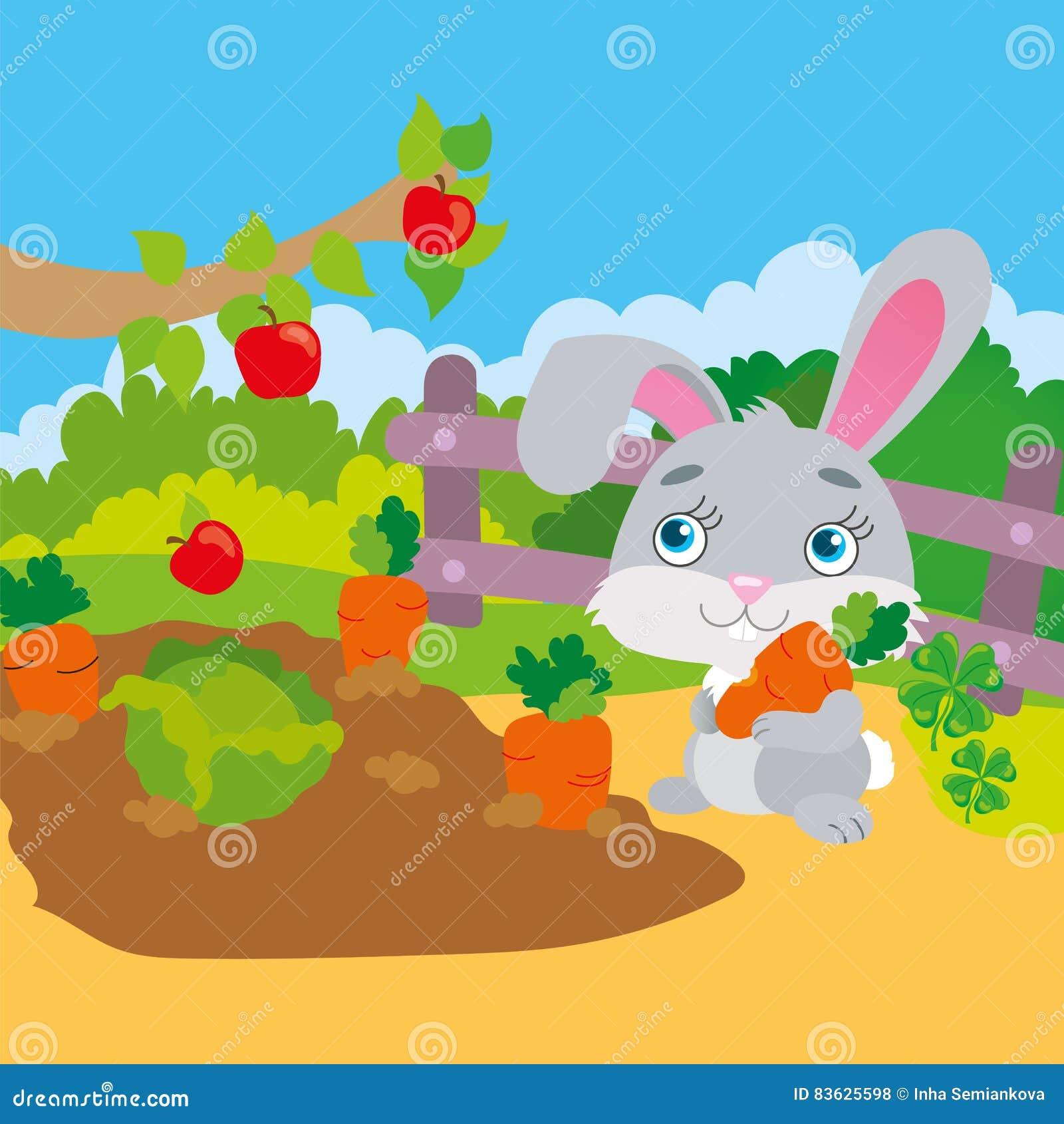 Rabbit Gnawing Carrot In Garden