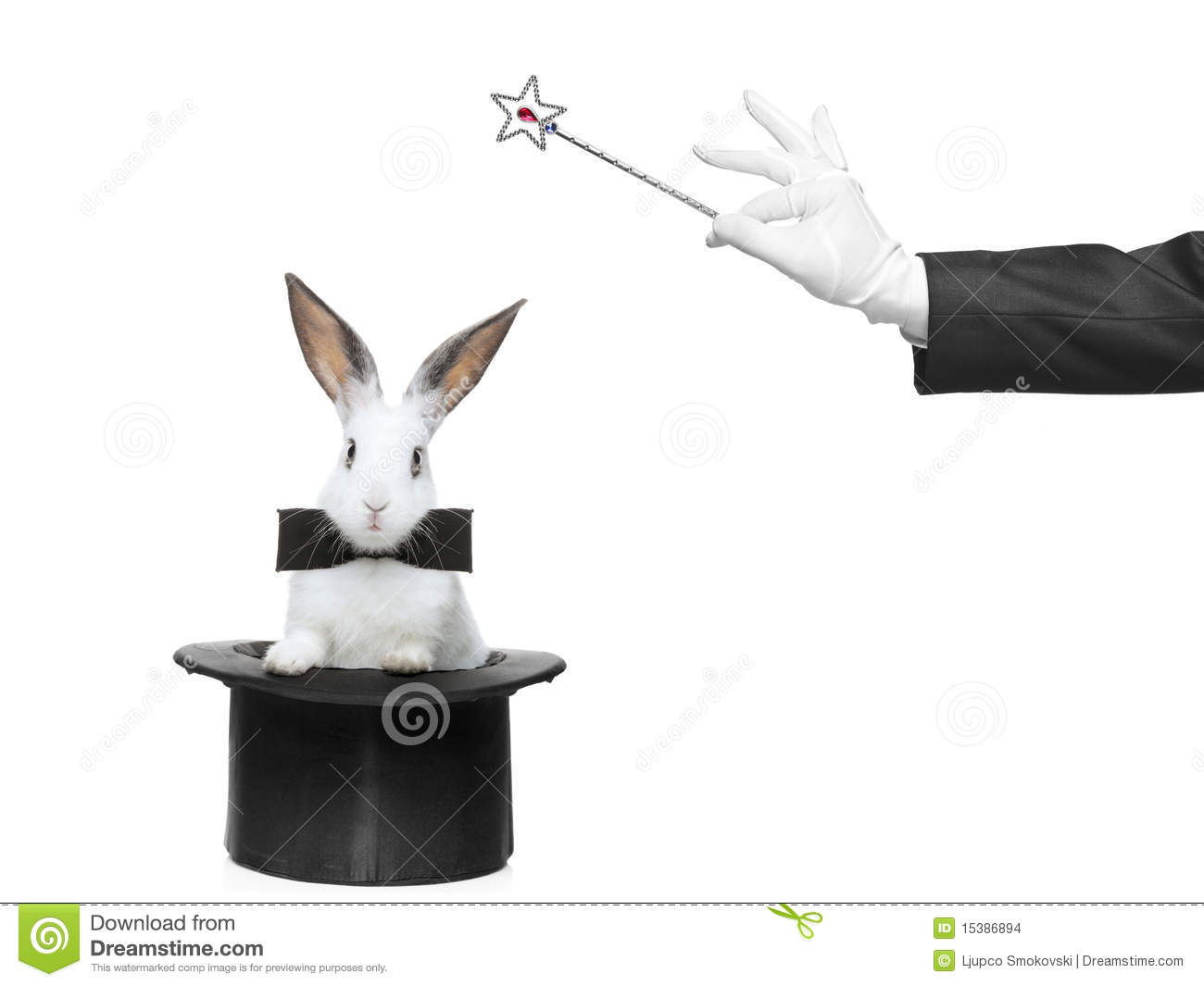 Image Gallery Magician Rabbit