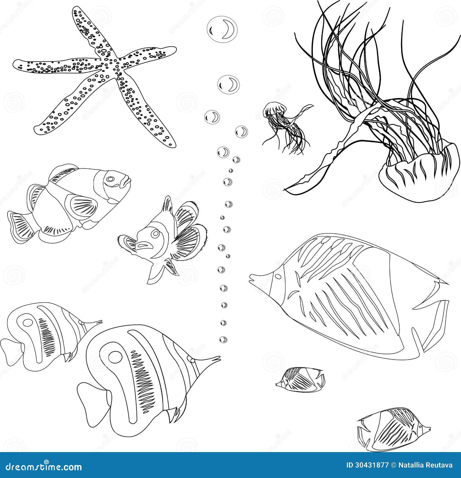Impressionante Disegni Per Bambini Da Colorare Anemoni Stelle Marine