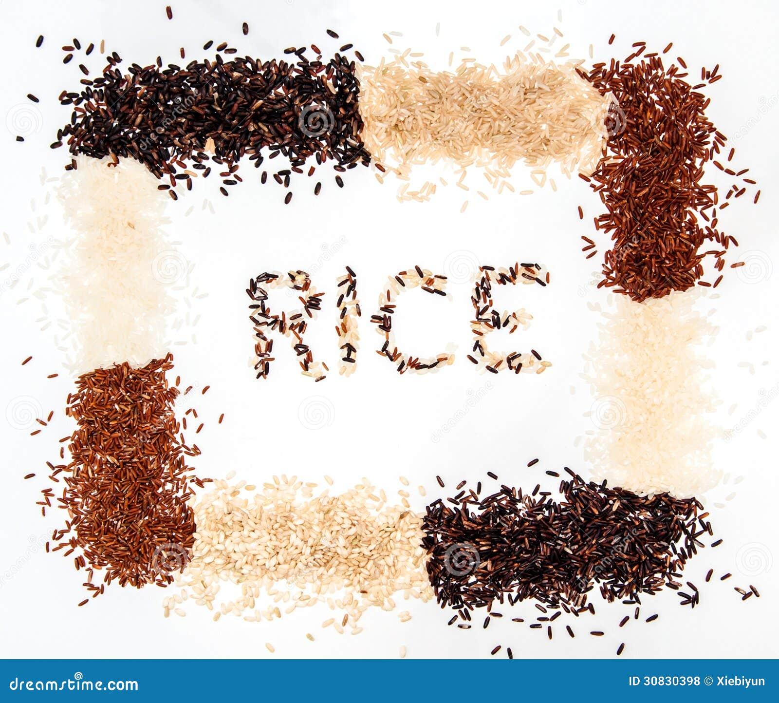 Raccolta del riso su fondo bianco
