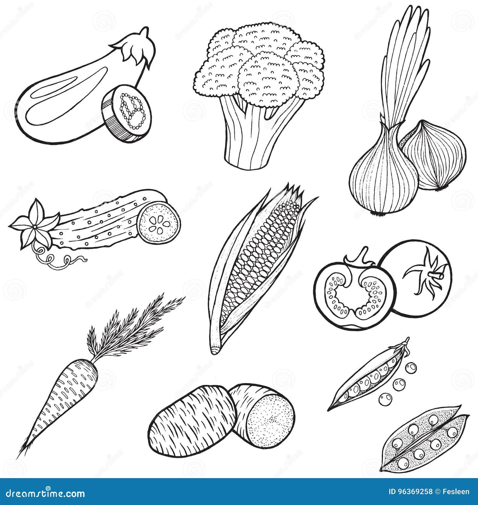 libro de ennio carota pdf gratis
