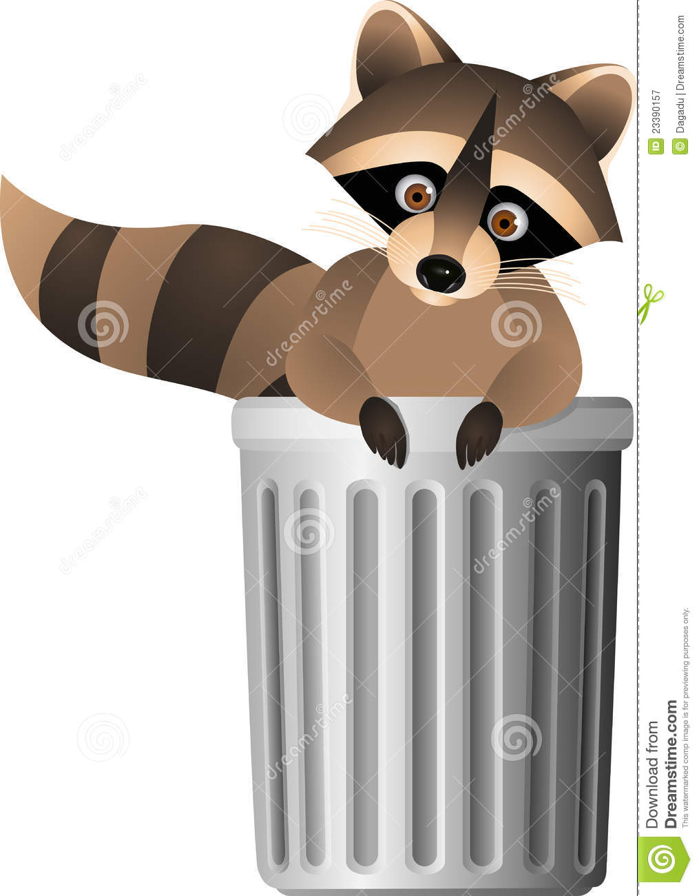 Raccoon Inside Garbage Can Stock Vector Illustration Of