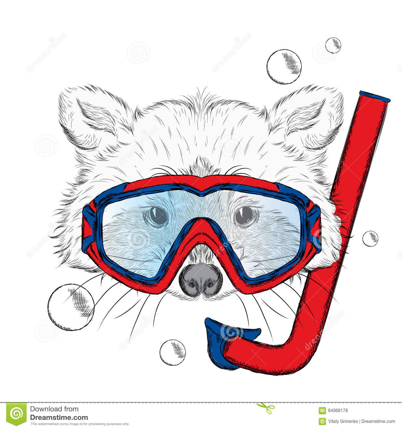 Raccoon In A Mask For Diving  Leisure At Sea  Hipster  Stock