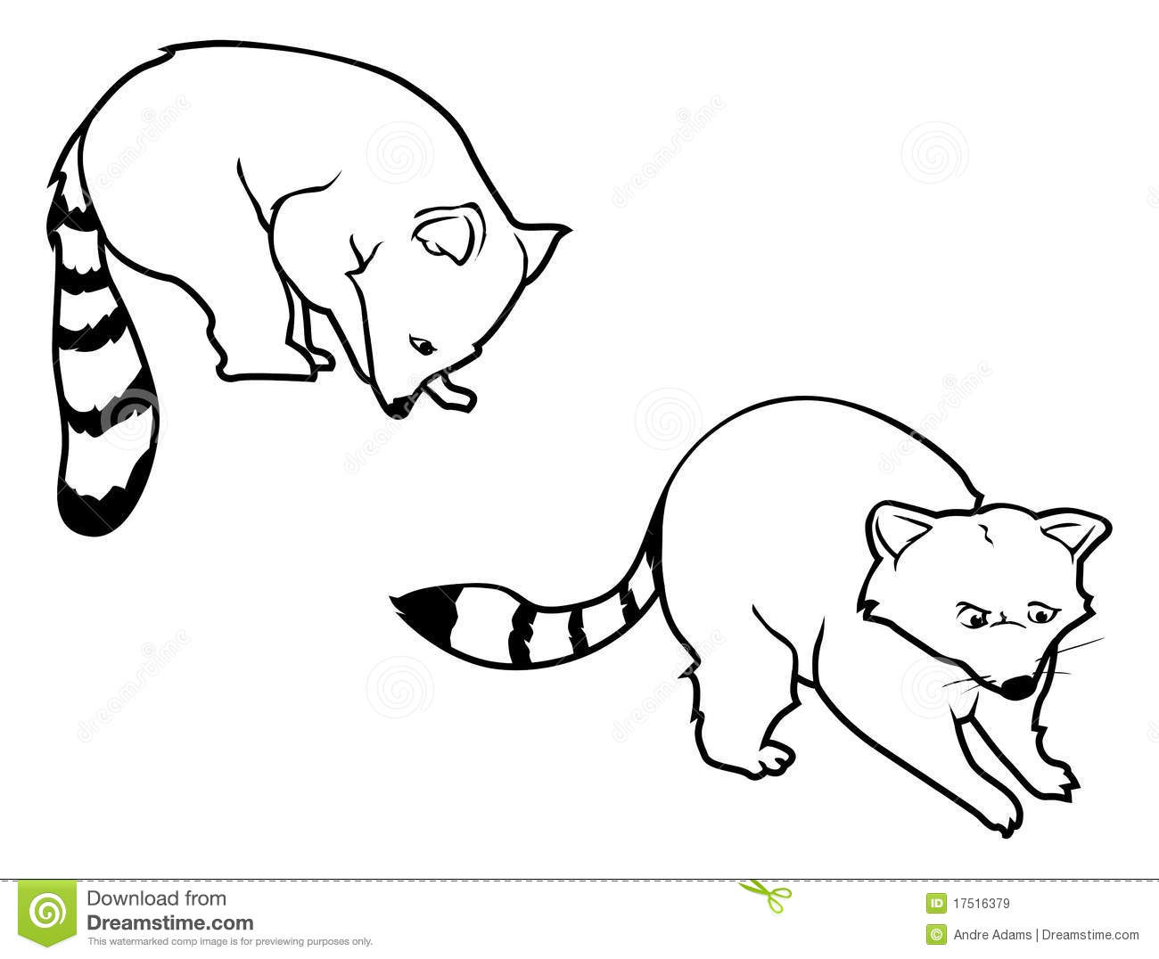 Line Drawing Raccoon : Raccoon outlines stock vector illustration of critter