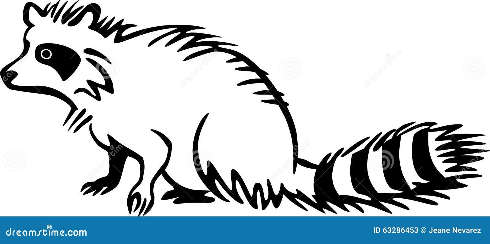 Line Drawing Raccoon : Raccoon stock vector image