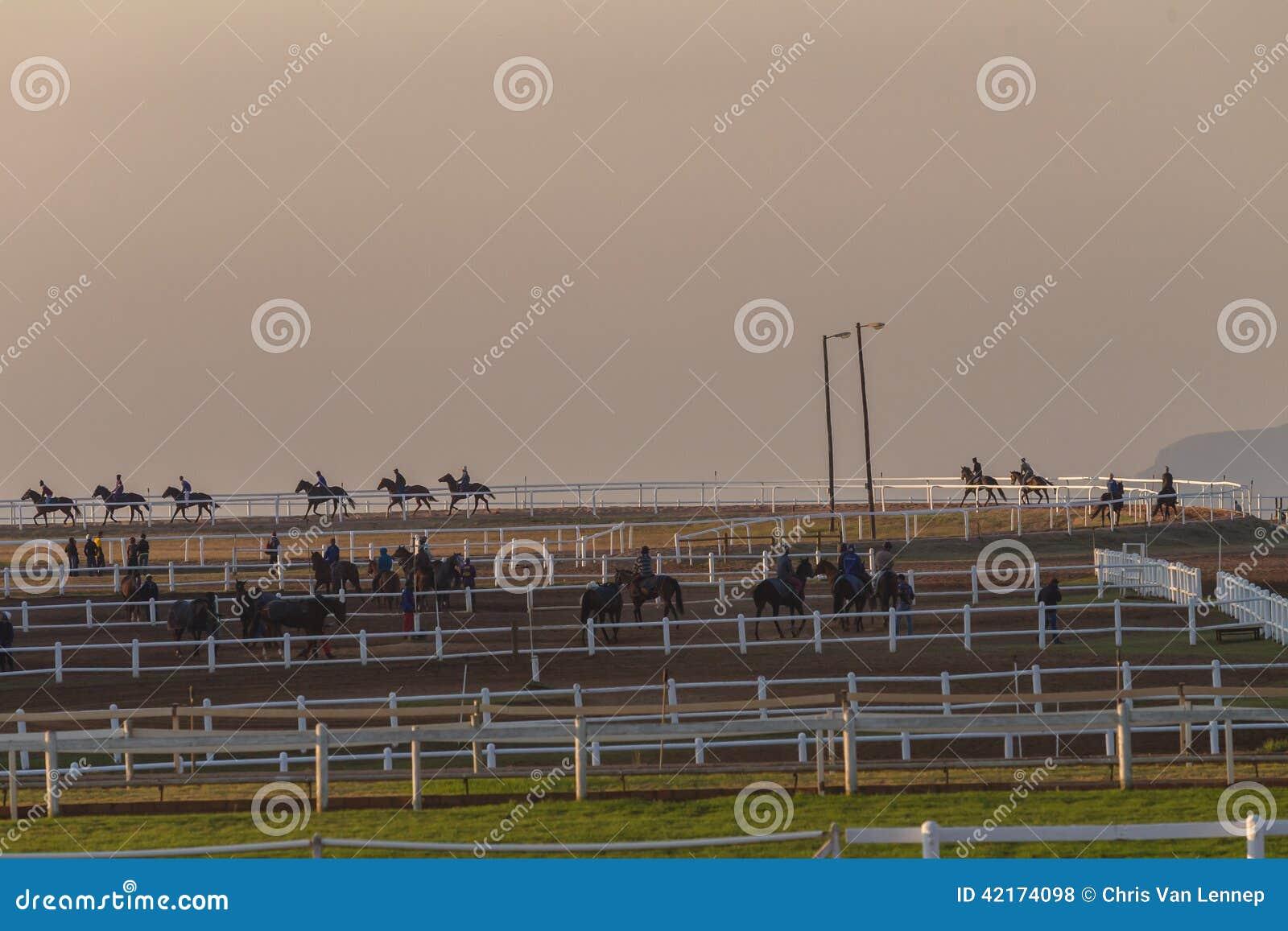 Race Horses Training Dawn