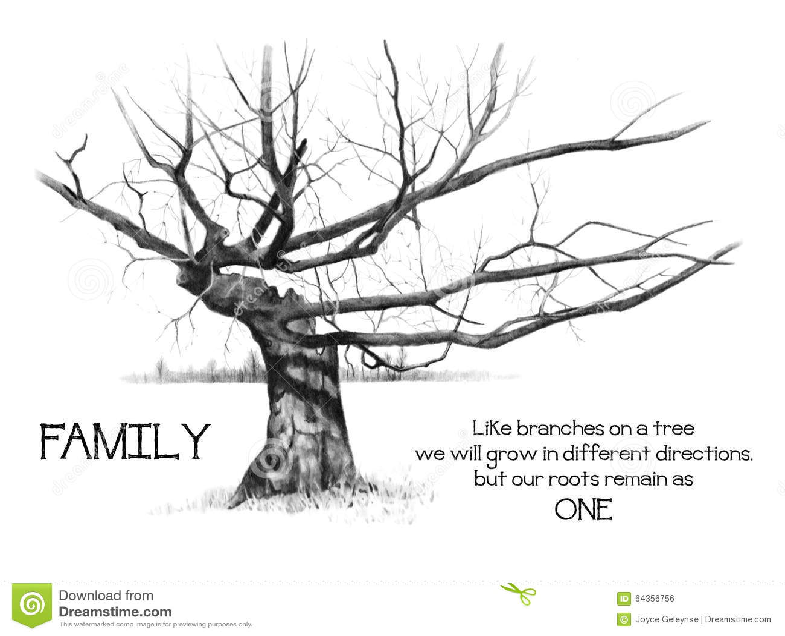Racines de famille avec l 39 arbre gnarly dessin au crayon - Dessin arbre nu ...