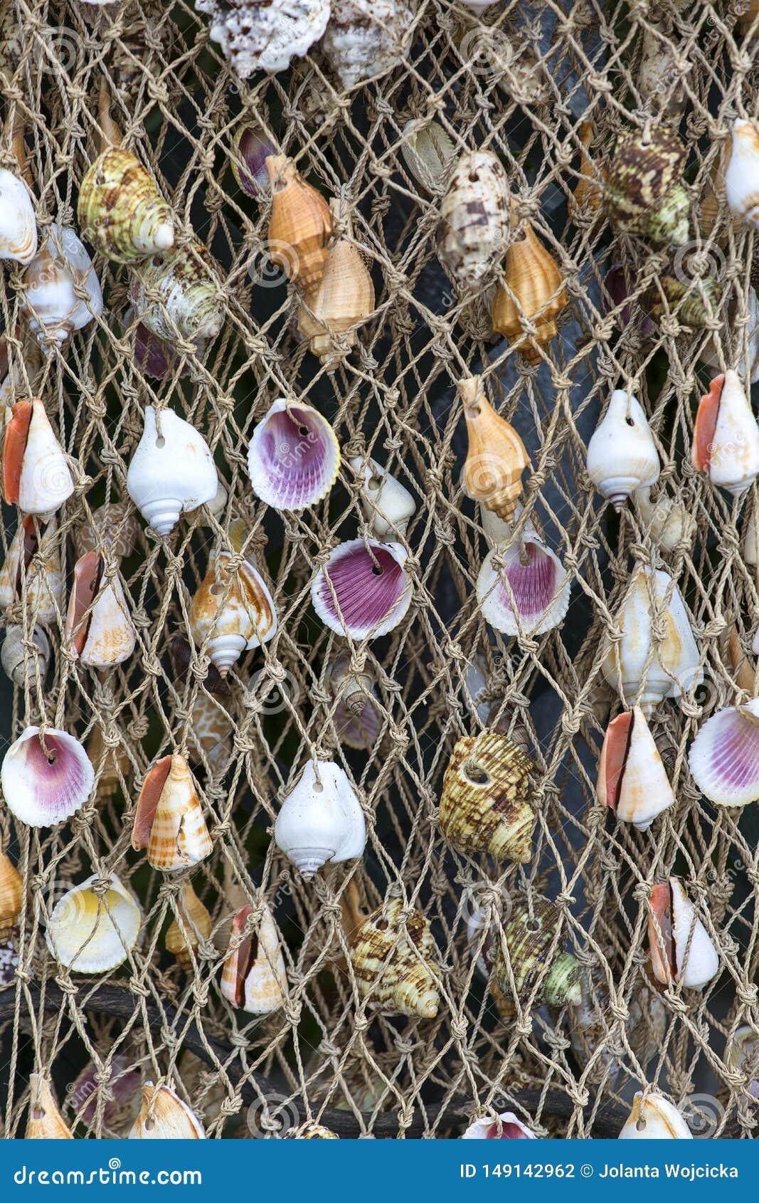 Rad som ?r netto med f?rgrika skal, handgjord garnering, souvenir shoppar, italienska Riviera, Italien