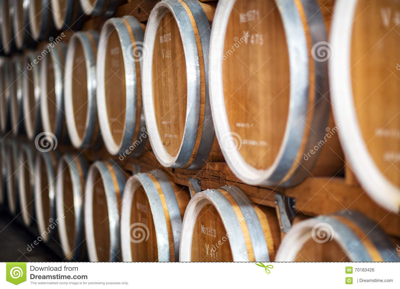 Rader av vinfat i valv på vinodlingen