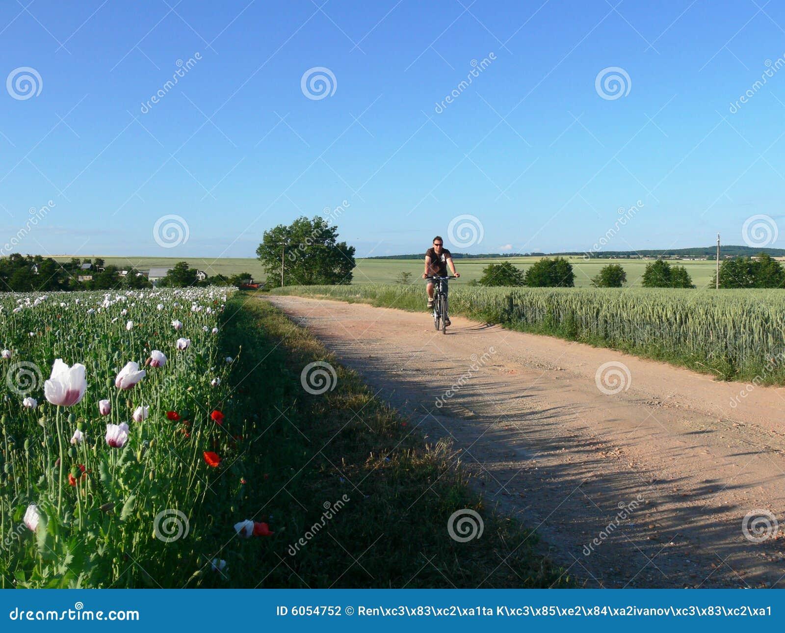 Radfahrer auf der landwirtschaftlichen Straße