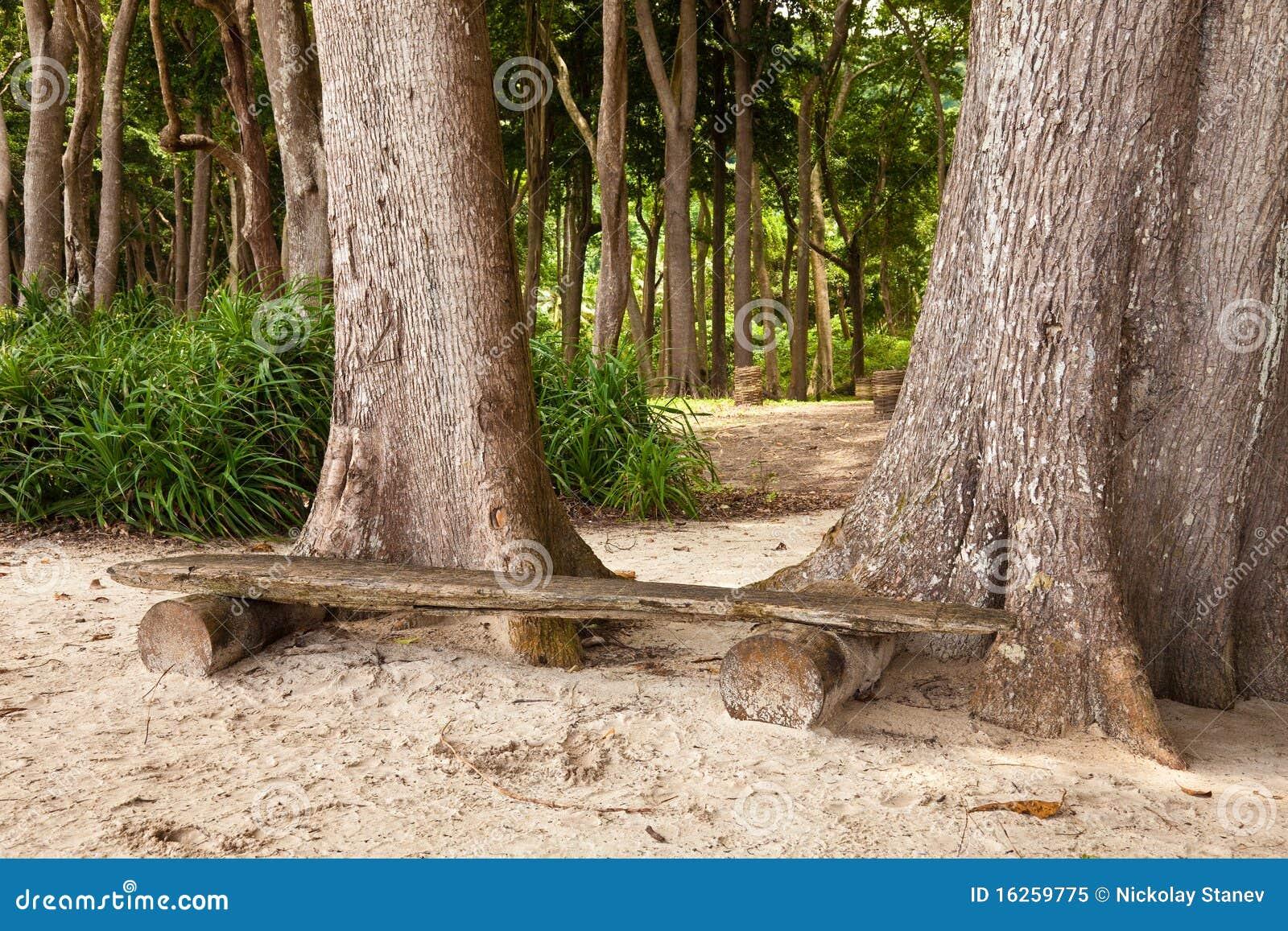 Radhanagar海滩的长凳