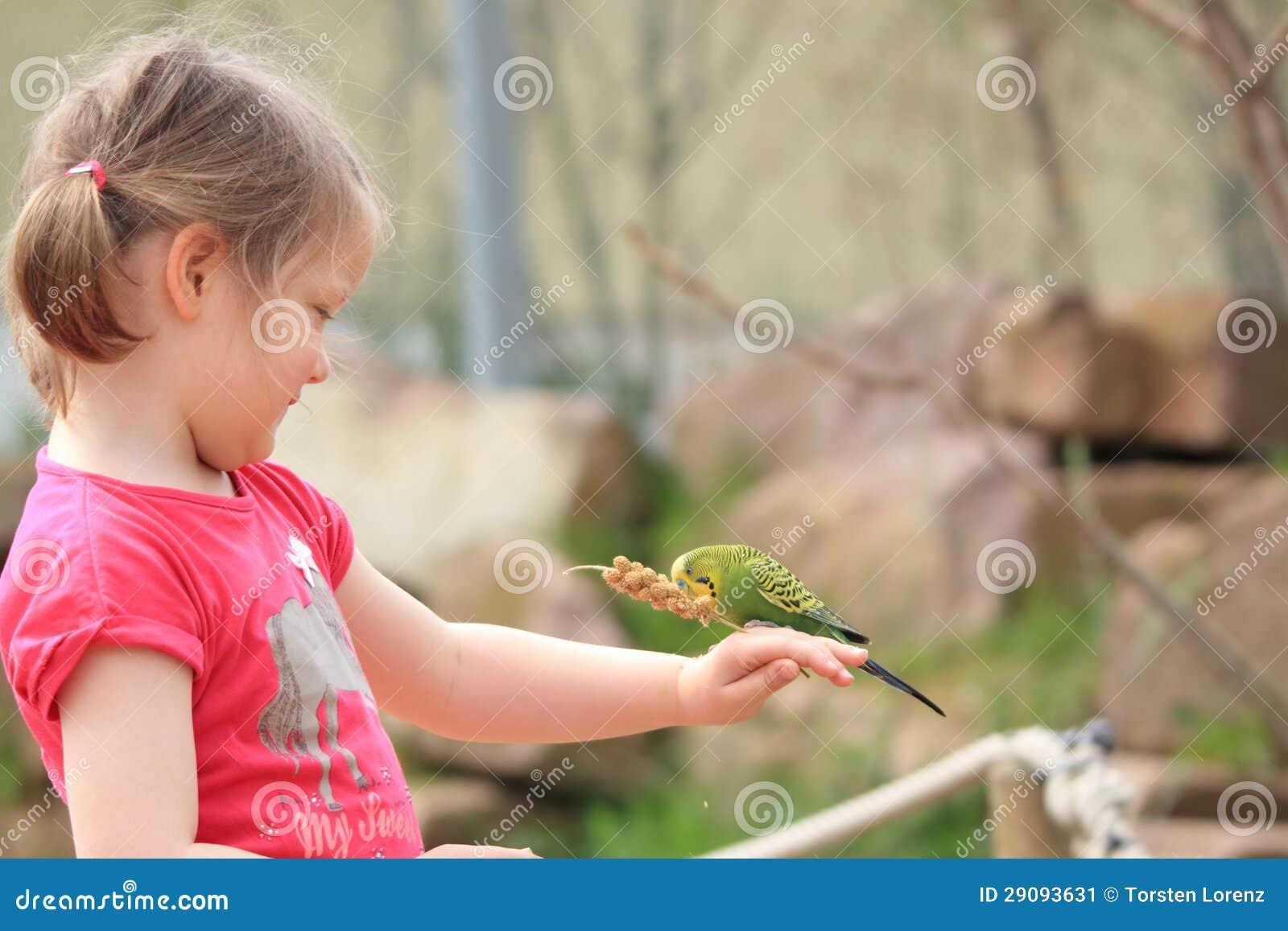 Ragazza con il pappagallino ondulato