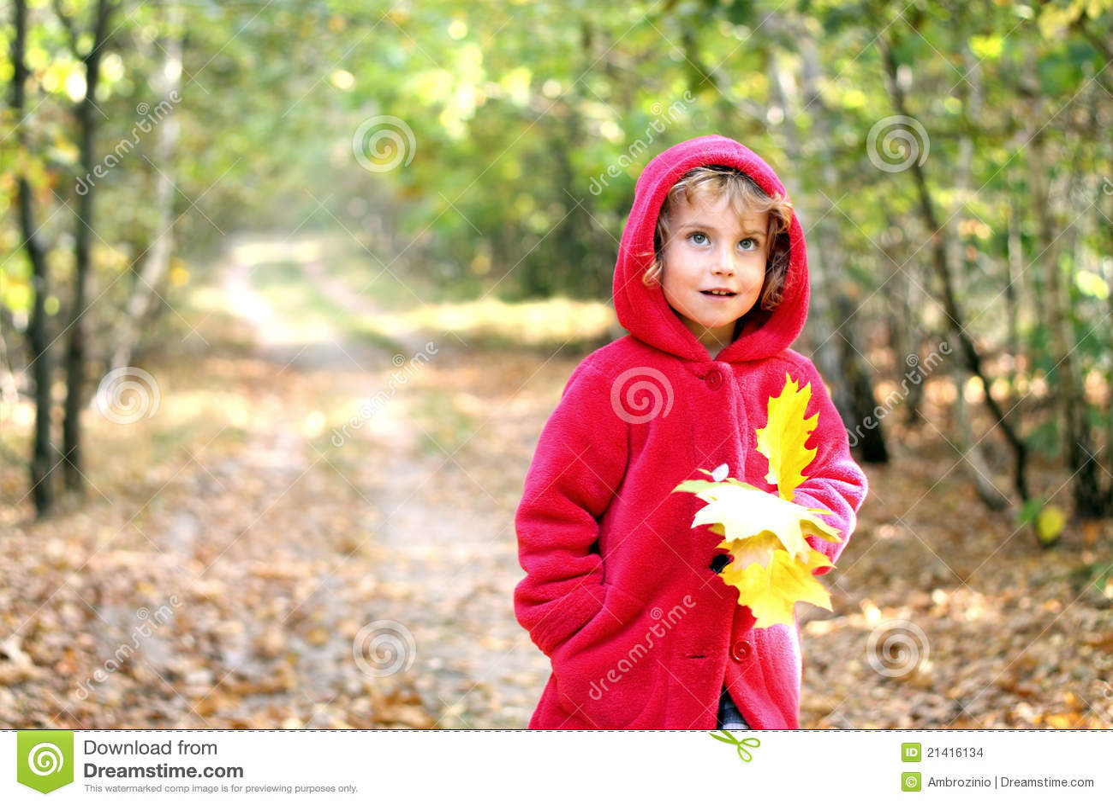 Ragazza di autunno in un cappuccio rosso