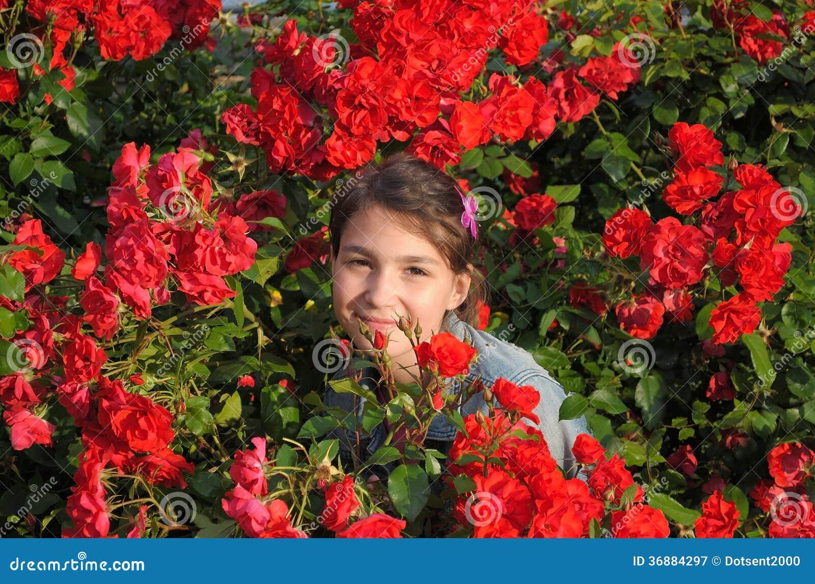 Download Ragazza e rose. immagine stock. Immagine di background - 36884297