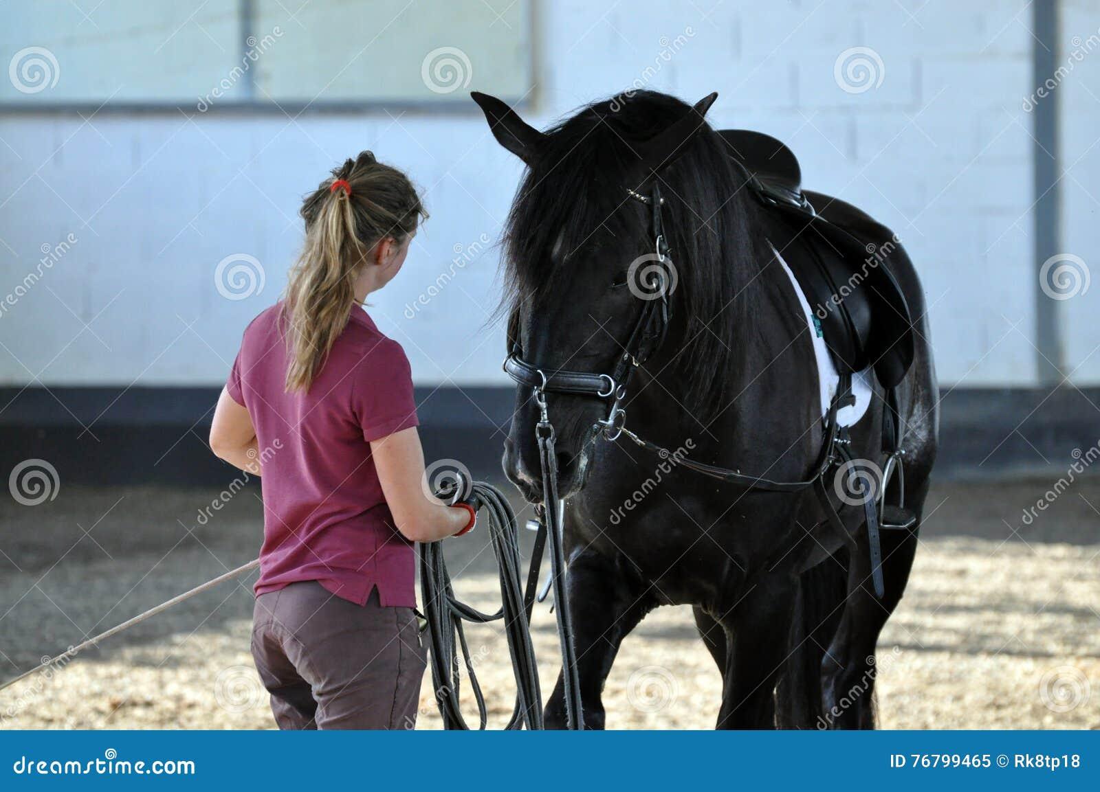 Ragazza e stallone nero