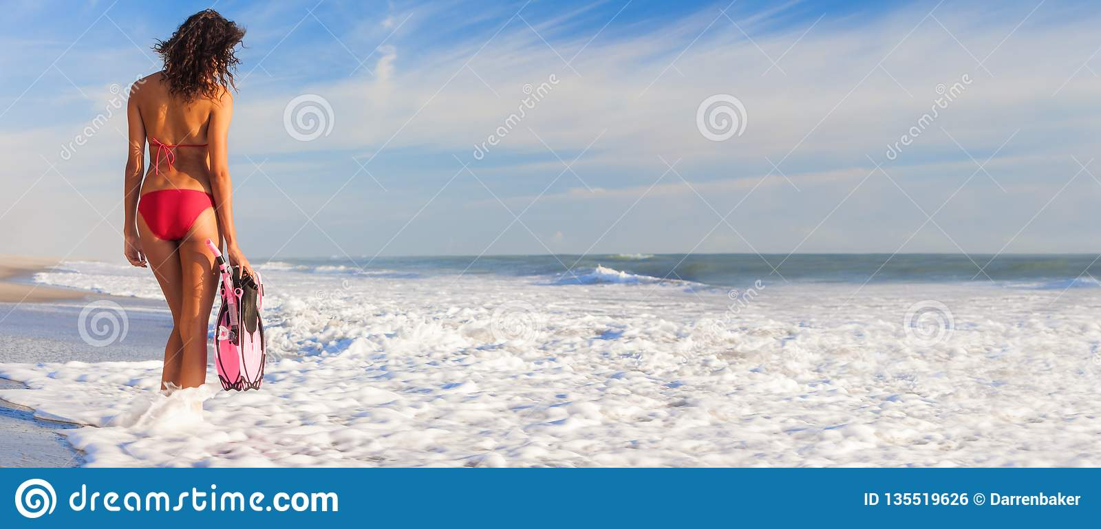 Ragazza panoramica della donna del bikini di retrovisione alla spiaggia