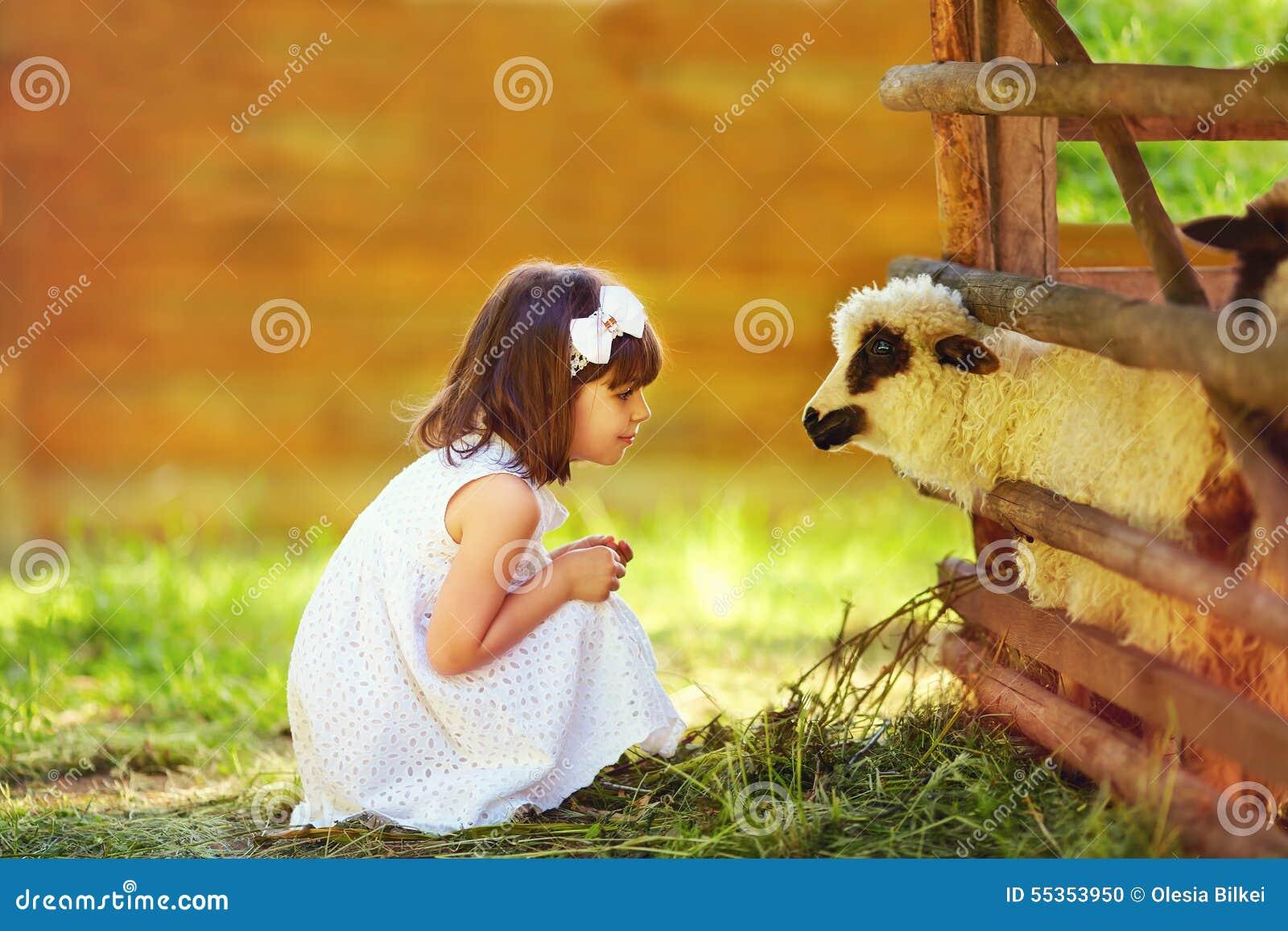 Ragazza sveglia, agnello d alimentazione del bambino con erba, campagna